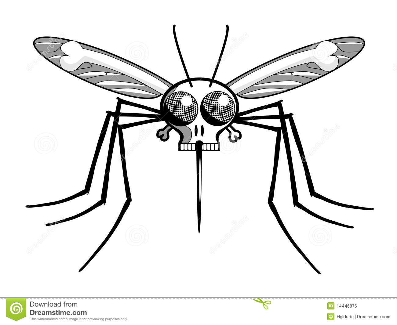 S Head Malaria Mosquito Royalty Free Stock Image