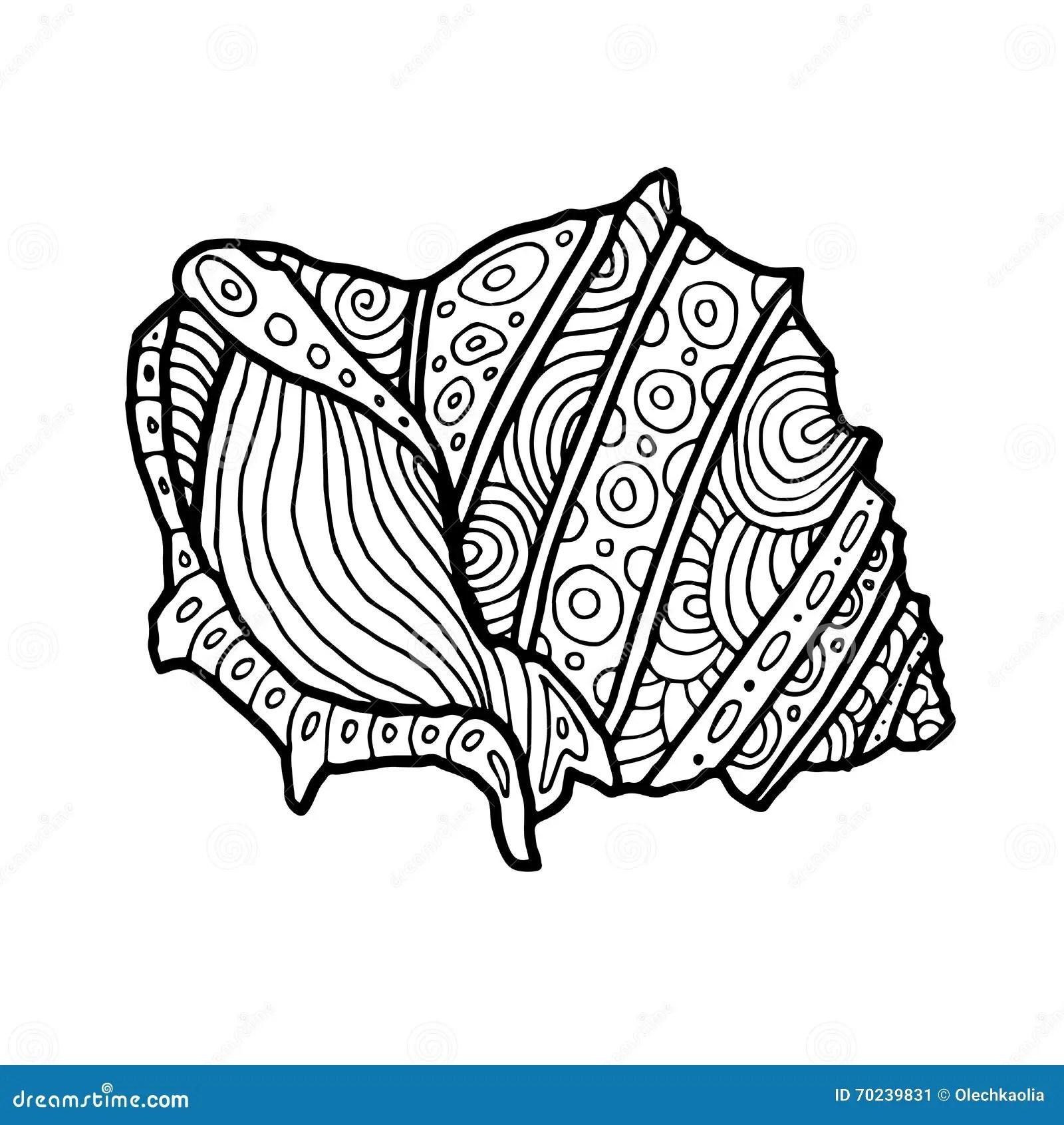 Decorative Zentangle Sea Shell Illustration Outline