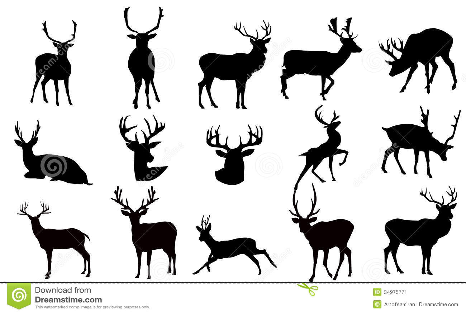 Deer Doe Dead