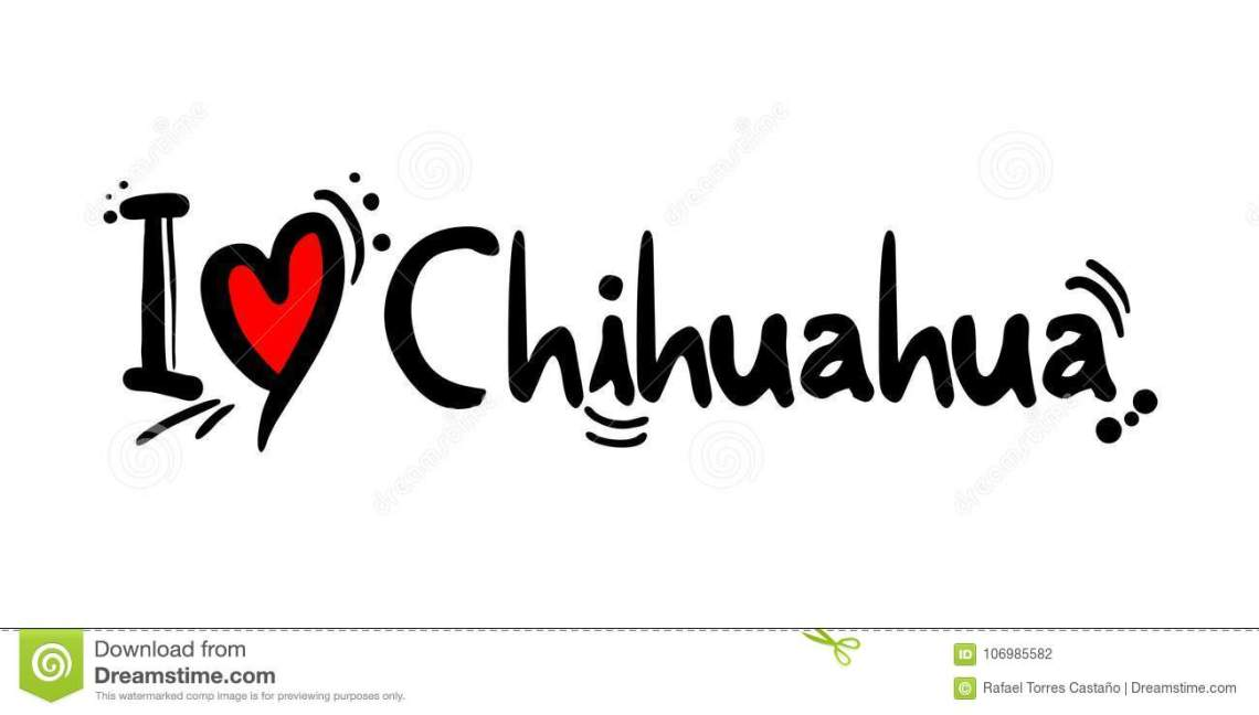 Download Chihuahua City Of Mexico Love Message Stock Vector ...