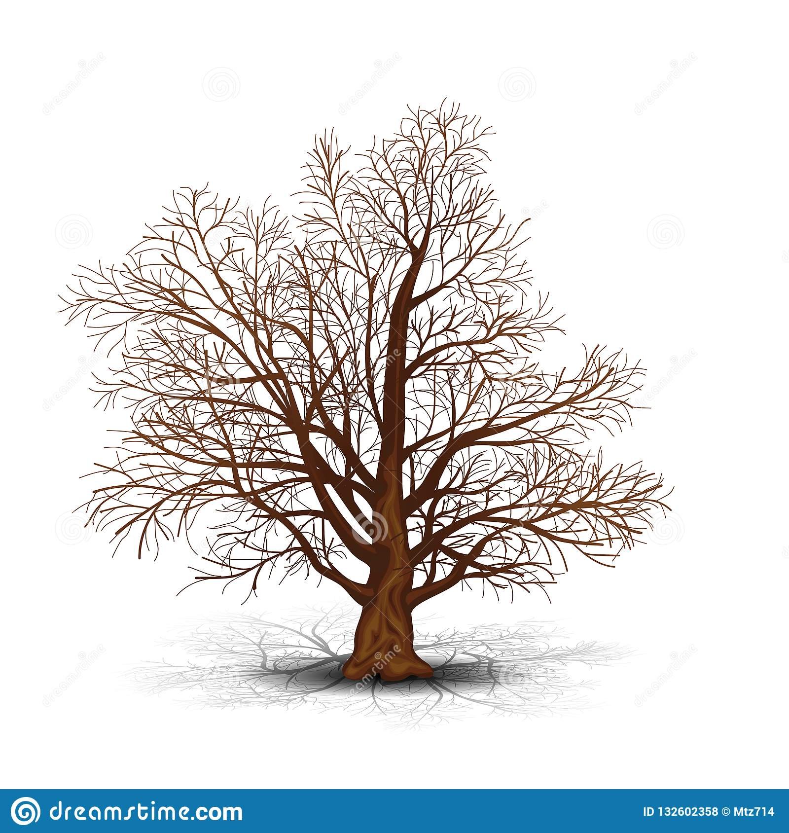 Detached Tree Without Leaves With Shadow Stock Vector