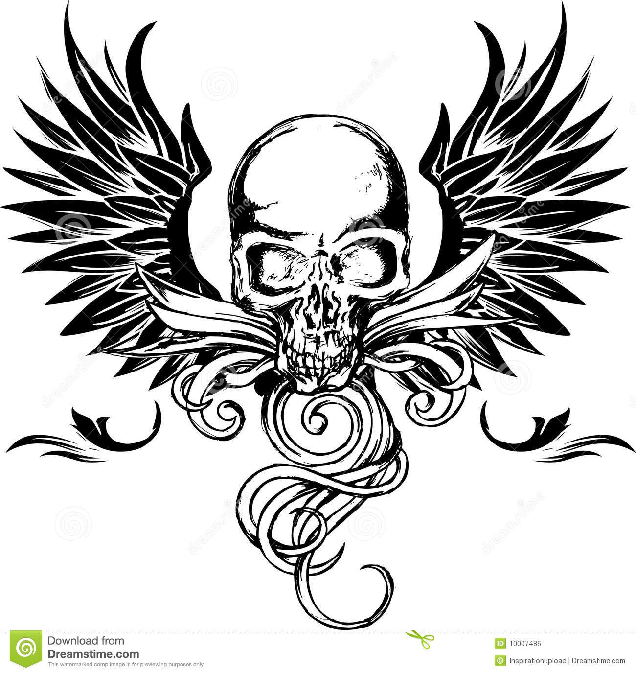 Detailed Skull With Wings Stock Vector Illustration Of