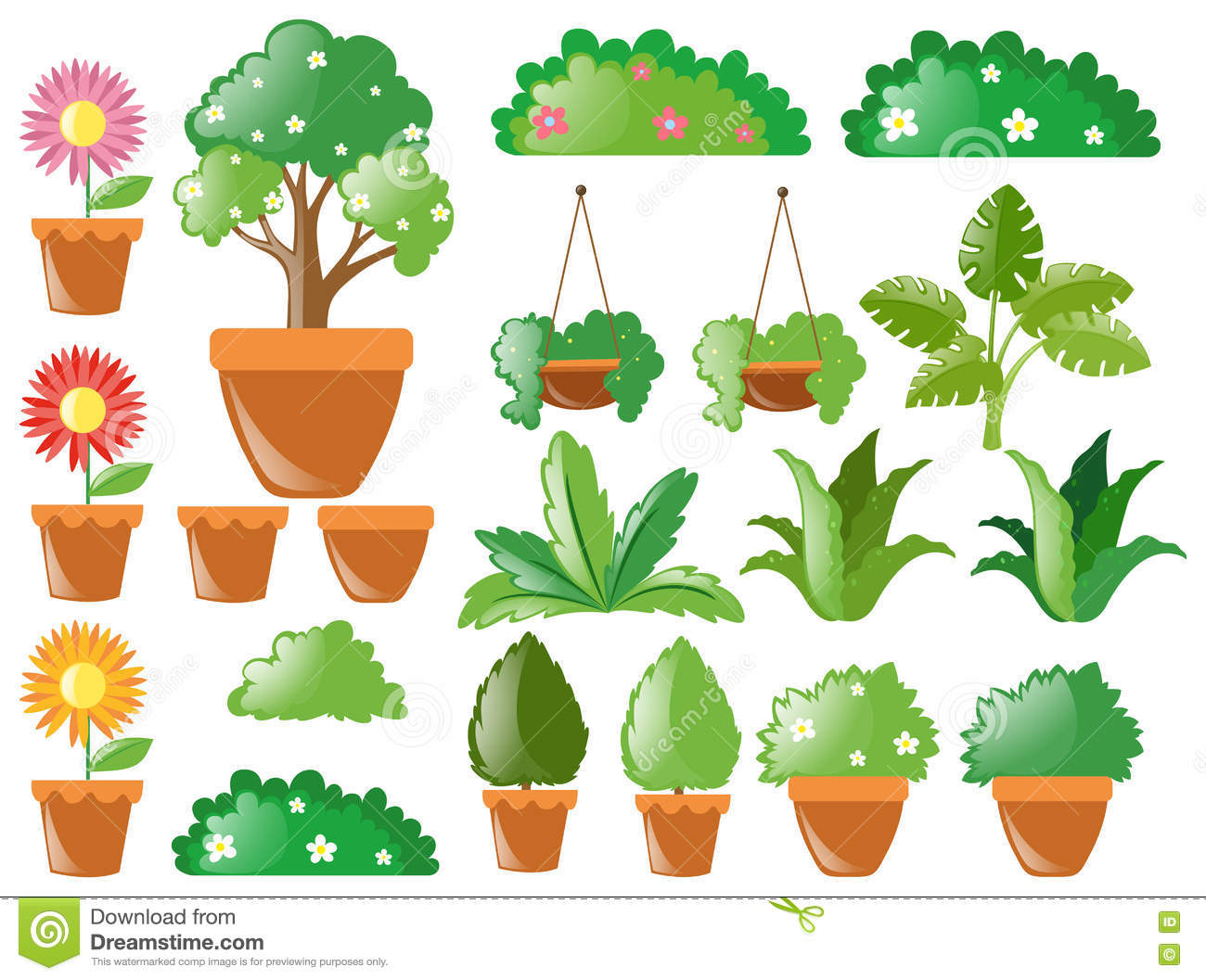 Different Types Of Plants Stock Vector Illustration Of