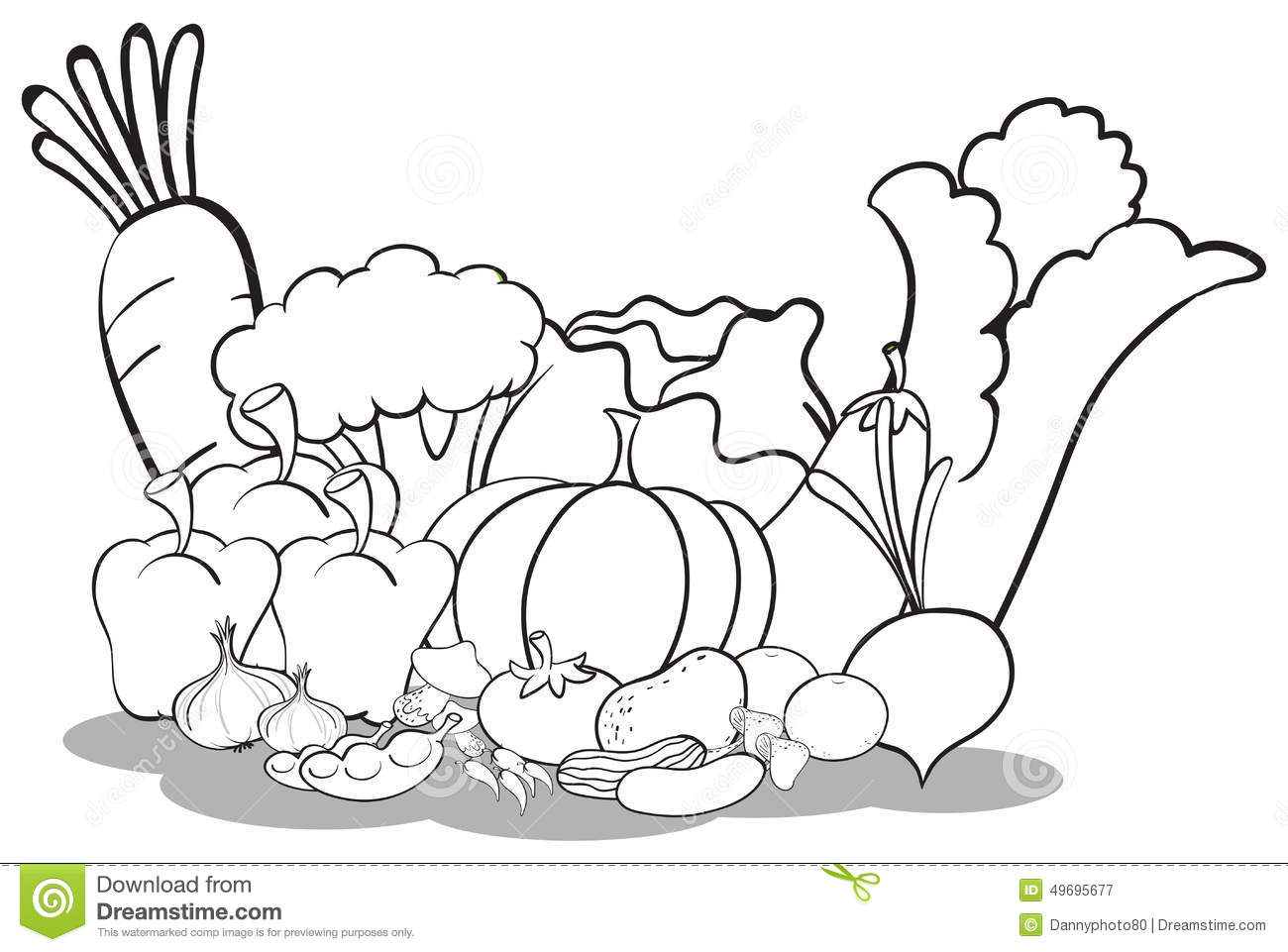 Different Vegetables Stock Vector Illustration Of Color