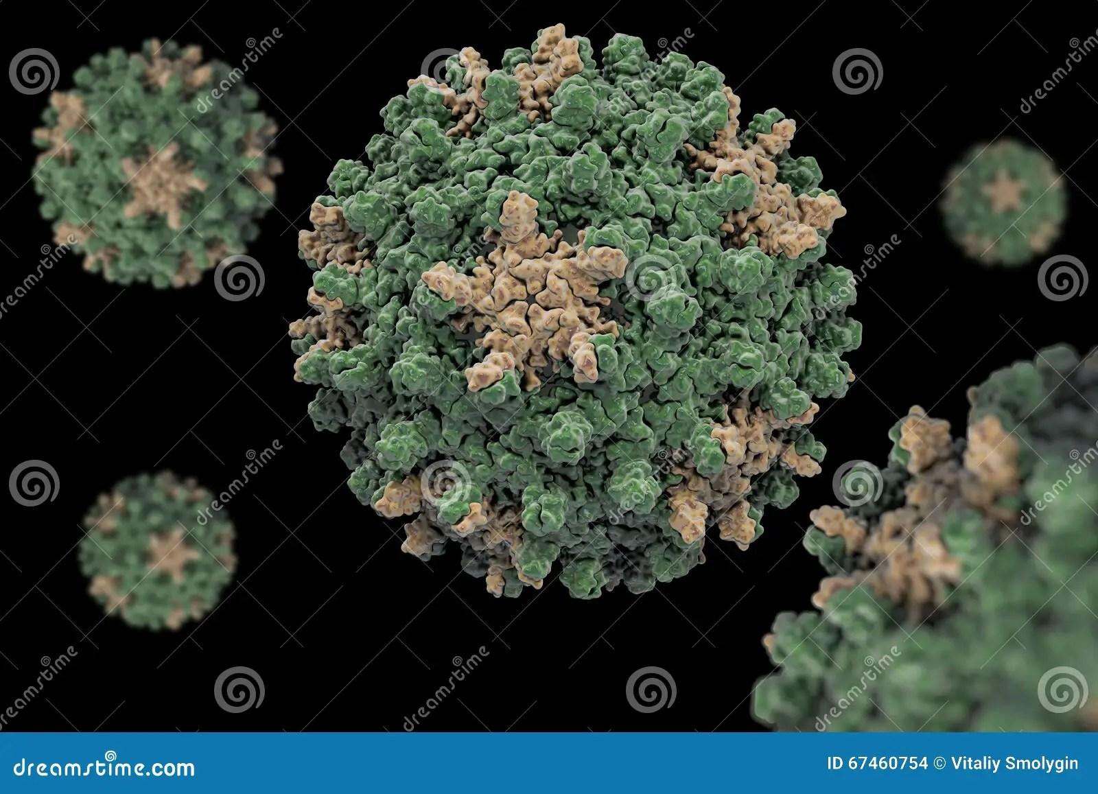 Digital Illustration Cell Hepatitis B Virus Stock