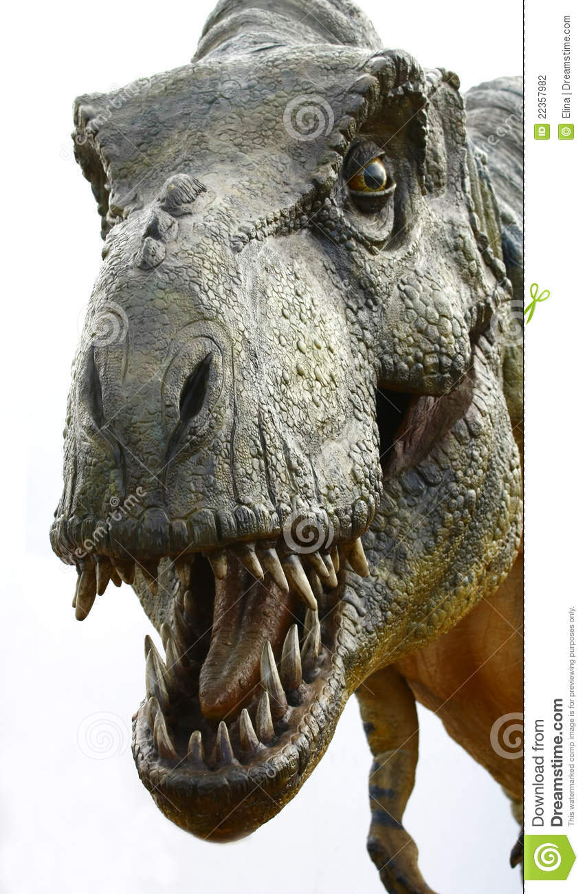 Dinosaur Tyrannosaurus Rex On White Editorial Photography