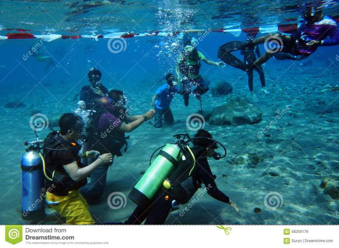 Diver Editorial Stock Image Image Of Leisure Diving 58259179