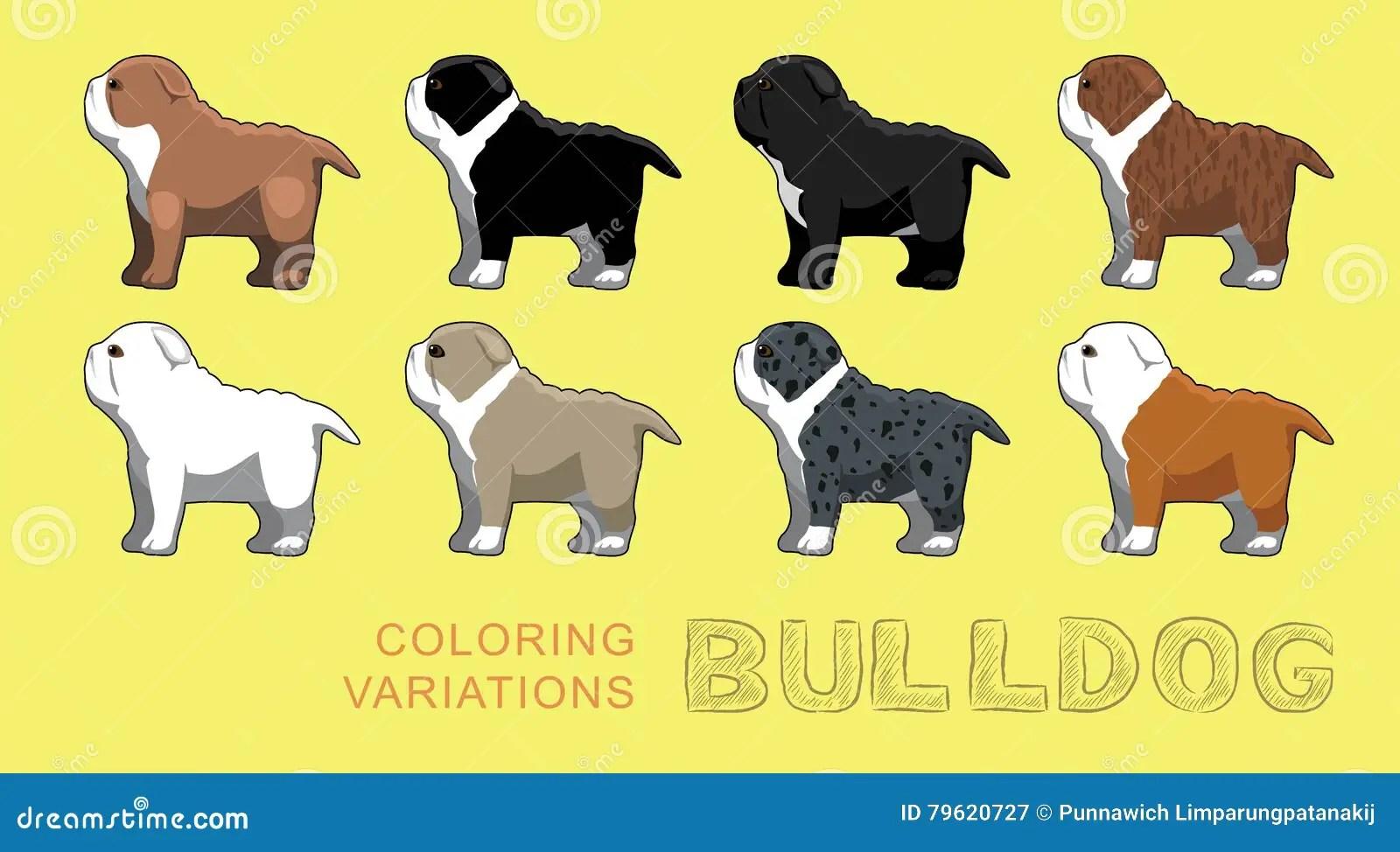 Dog Bulldog Coloring Variations Vector Illustration Stock Vector Illustration Of Blue Lilac 79620727
