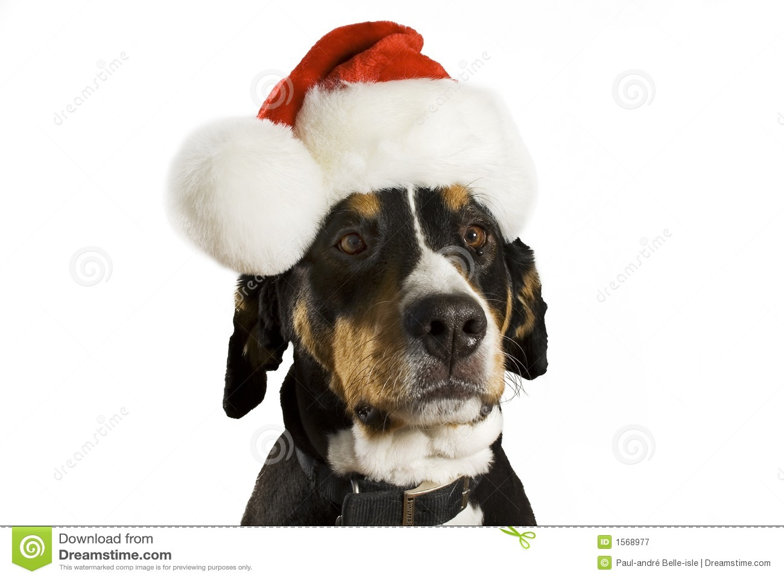 Christmas Santa Thumbs