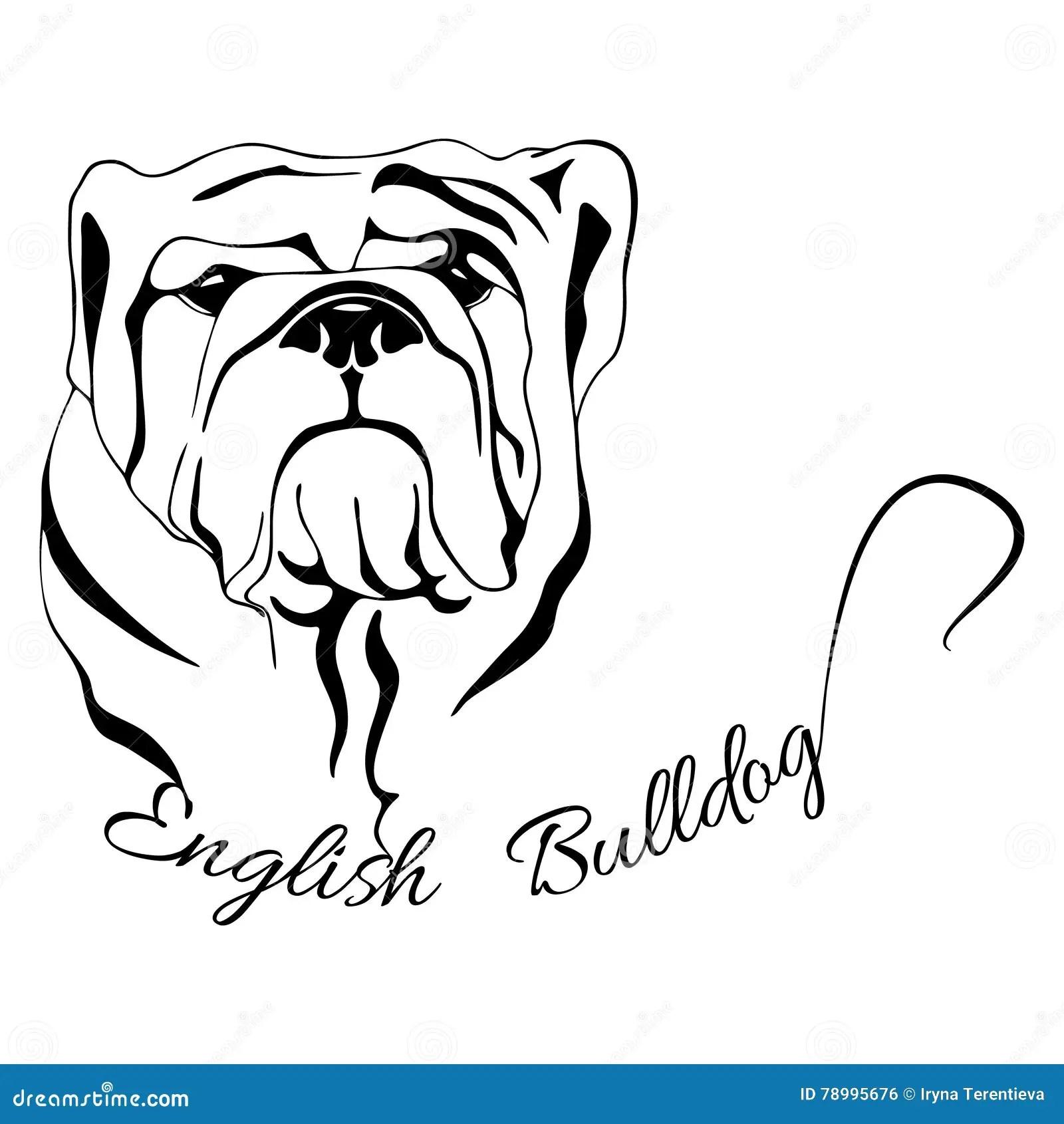 Dog Head Isolated English Bulldog Stock Vector