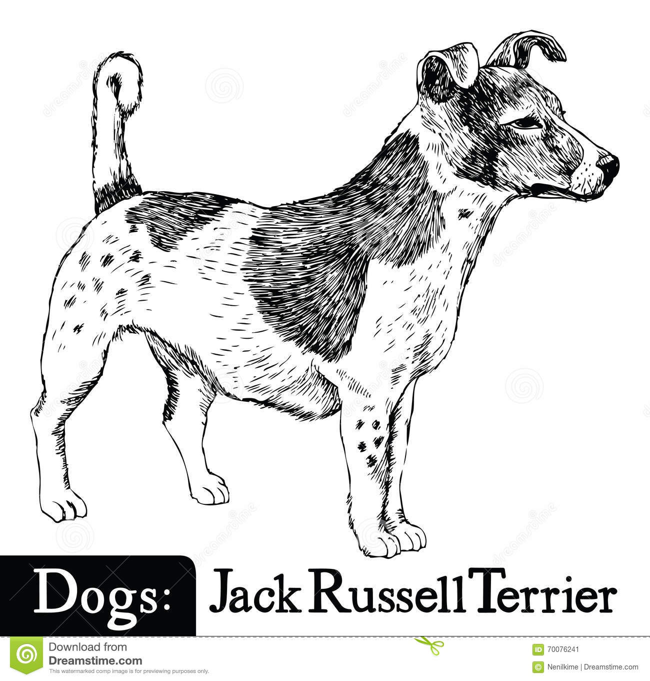 Dog Sketch Style Jack Russell Terrier Stock Vector