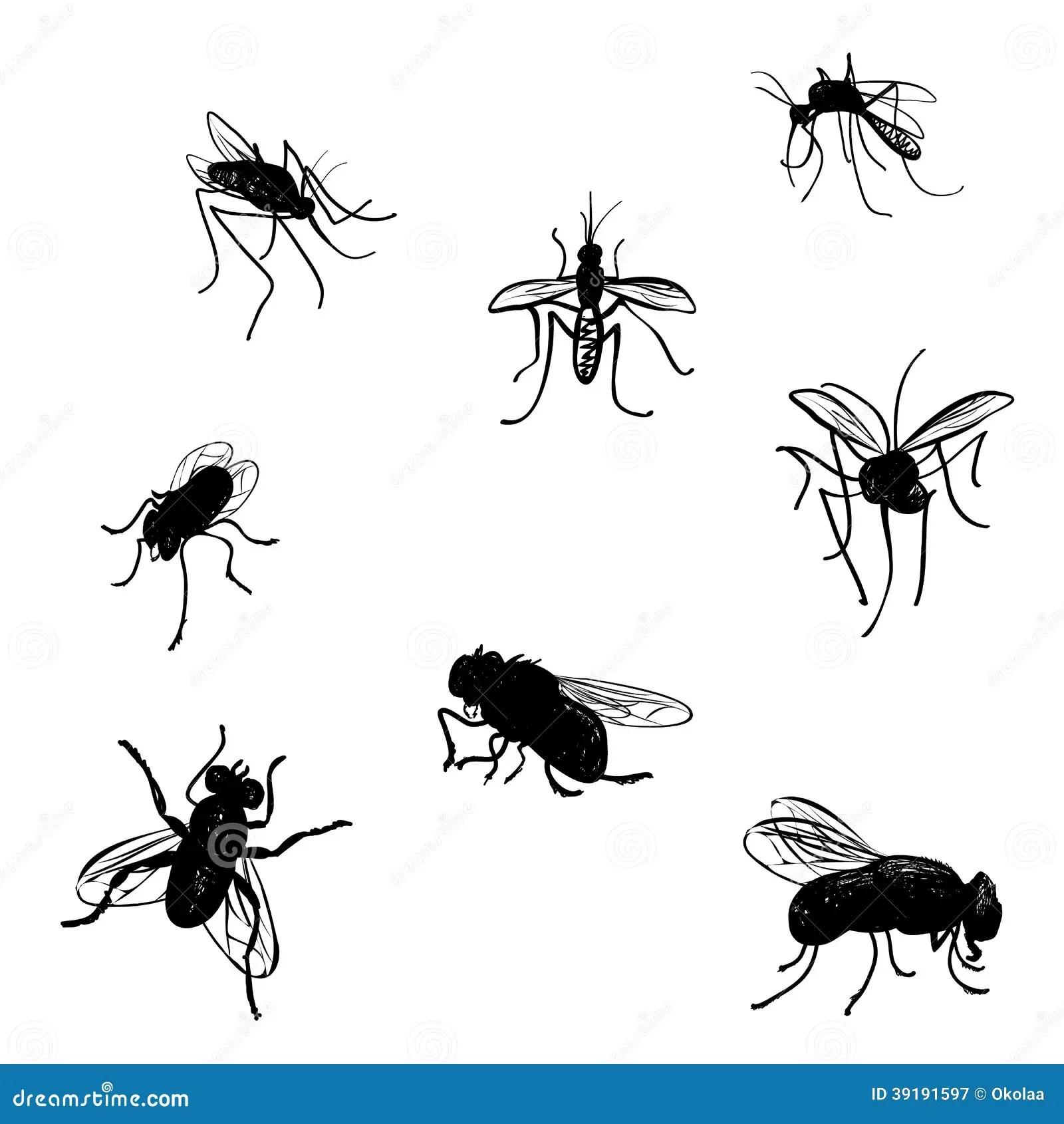 Doodle Flies And Mosquitoes Stock Vector Image 39191597