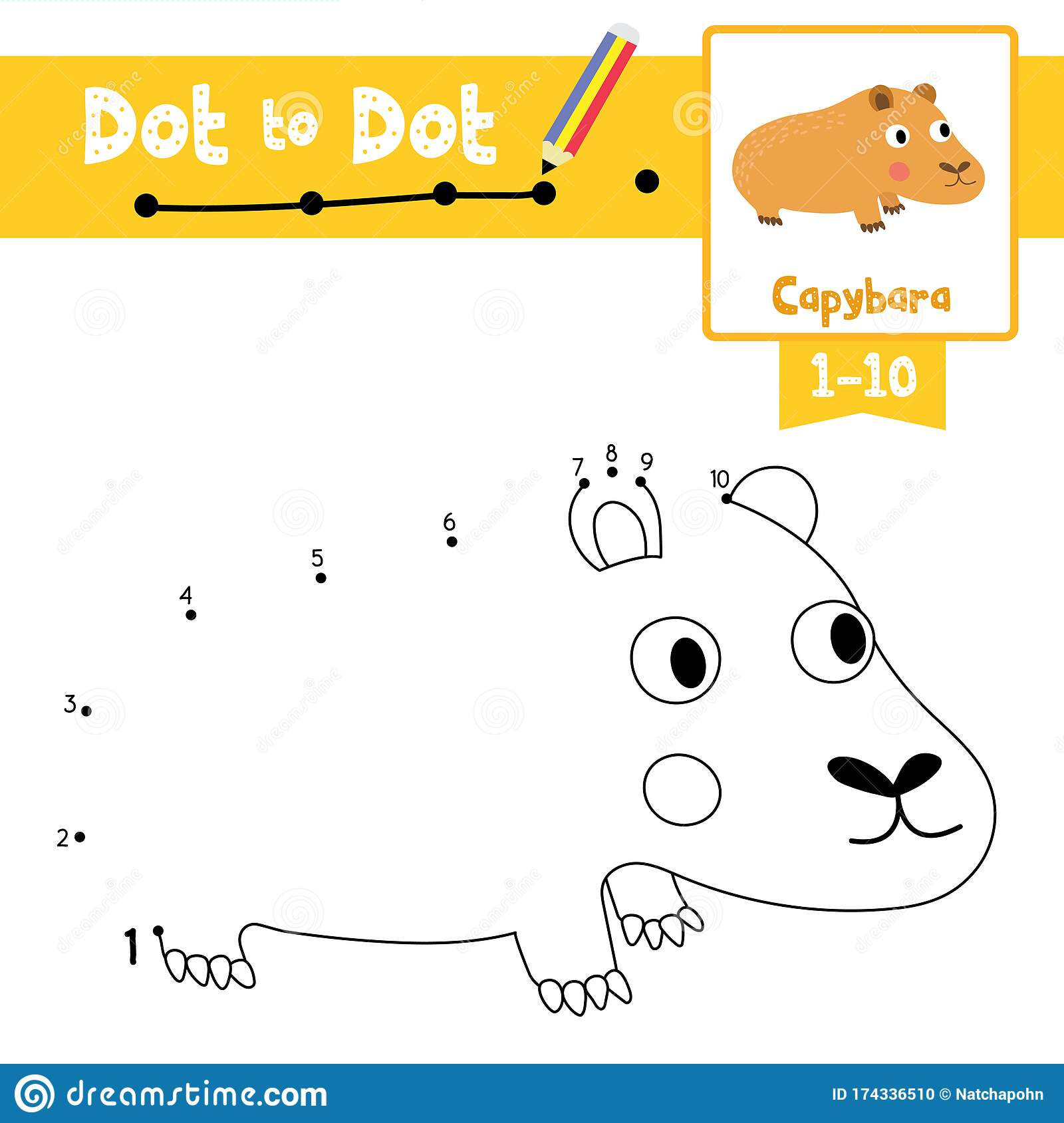 Dot To Dot Educational Game And Coloring Book Capybara