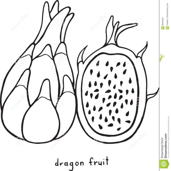 fruit coloring page # 61