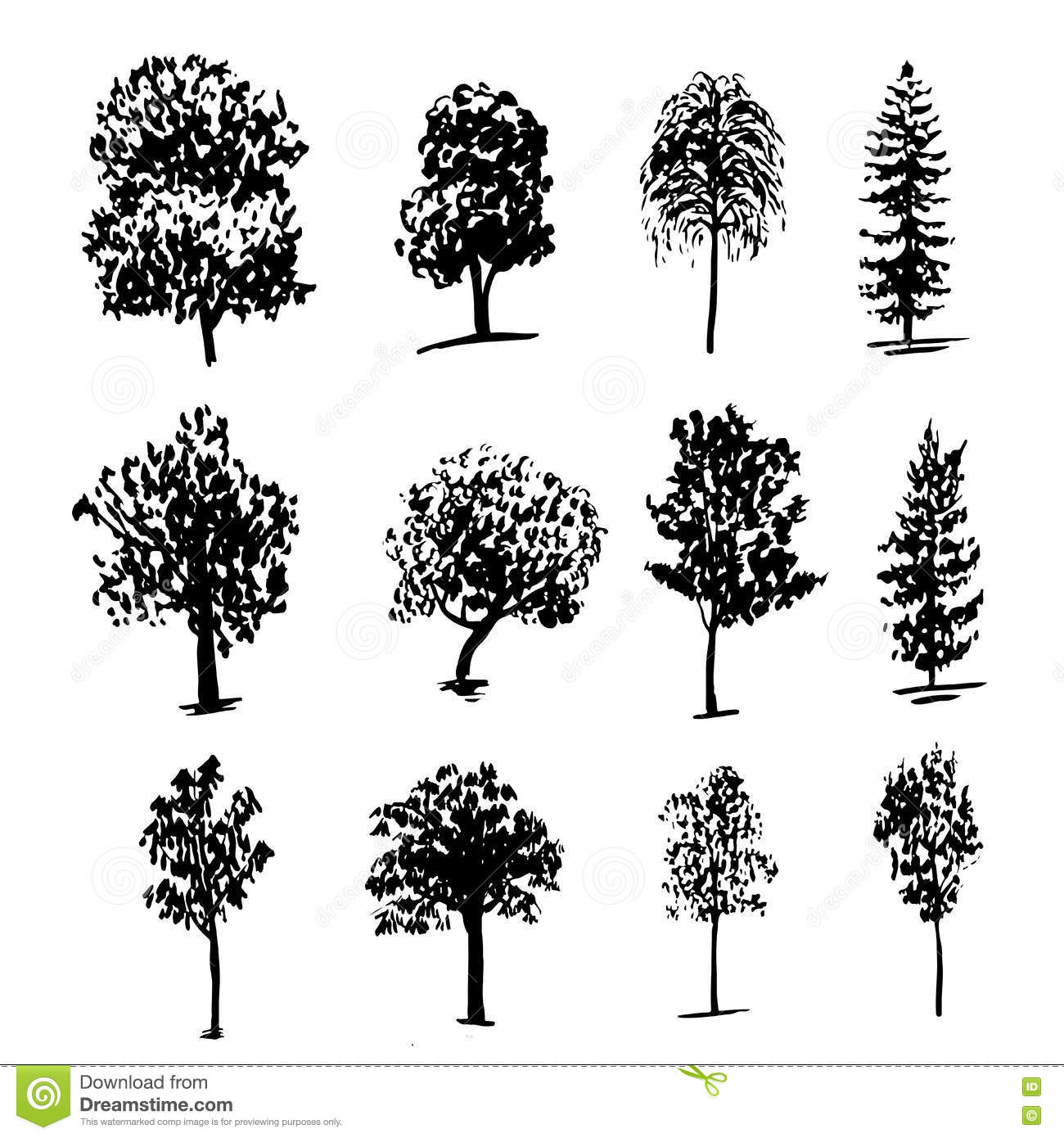 Drawing Collectiondifferent Types Of Trees Ink Sketch