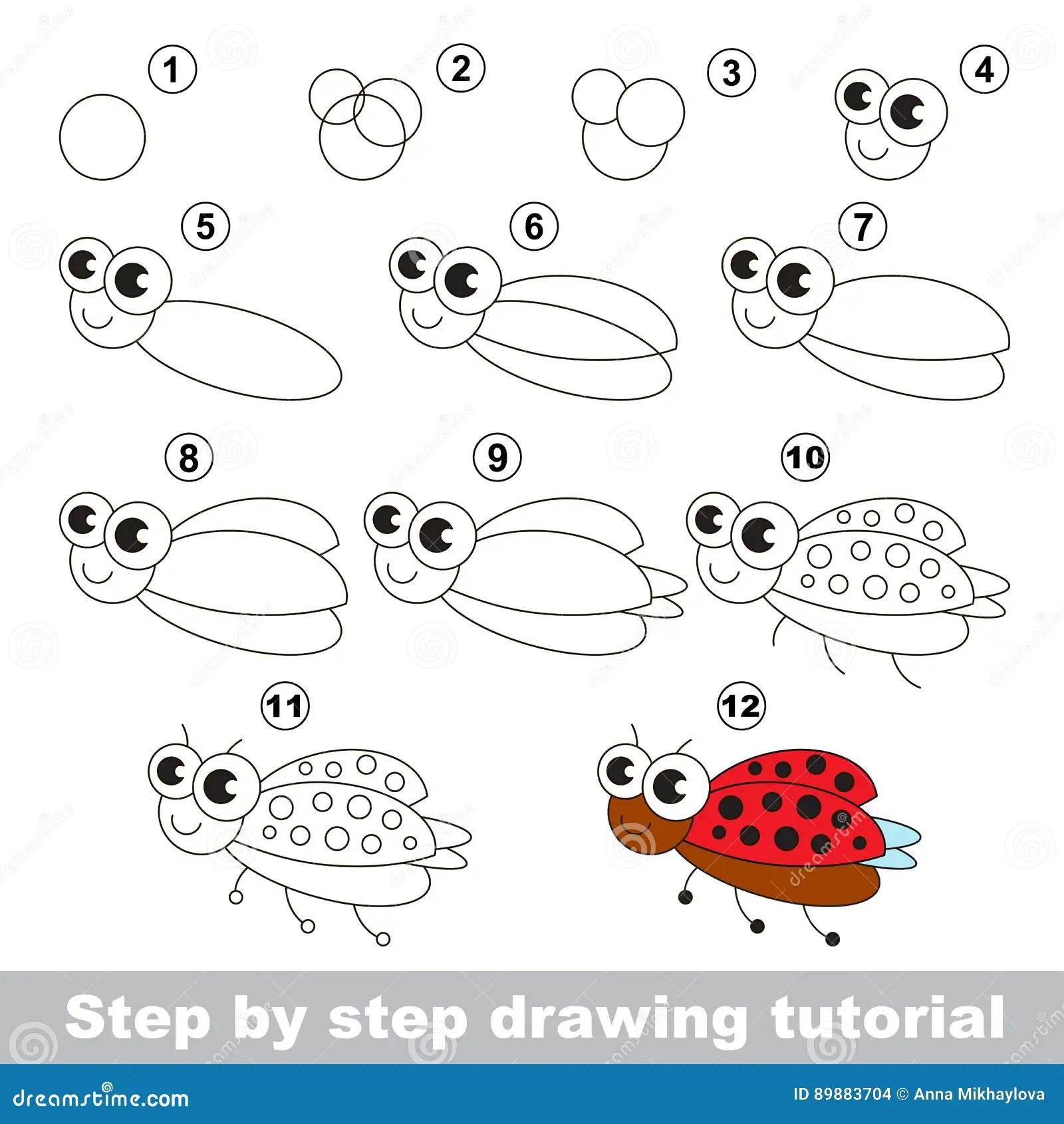 Drawing Tutorial Ladybird Stock Vector