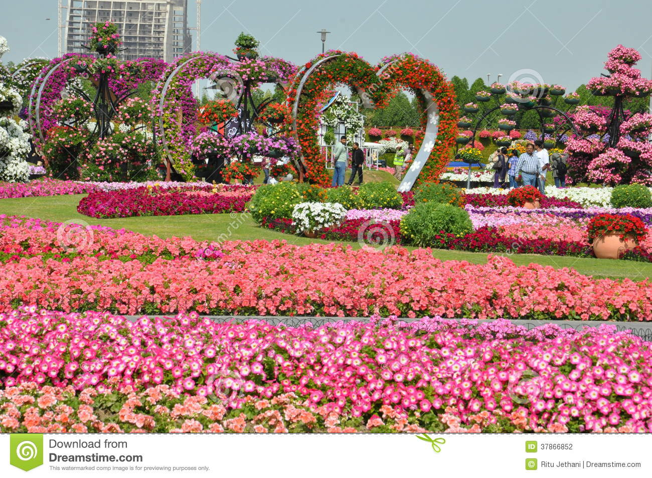 Dubai Miracle Garden In The UAE Editorial Photography