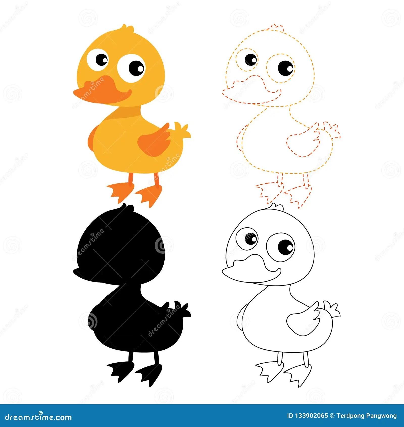 Duck Worksheet Vector Design Stock Vector