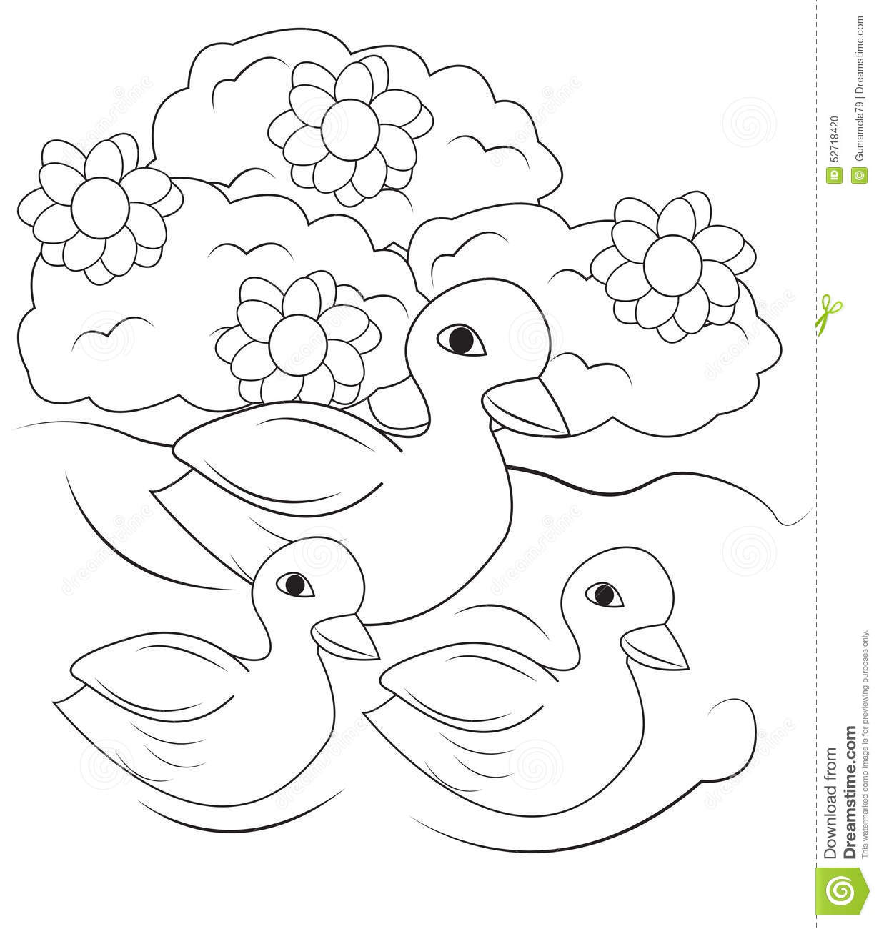 Stock Photo Ducks Swimming In The Pond Coloring Page