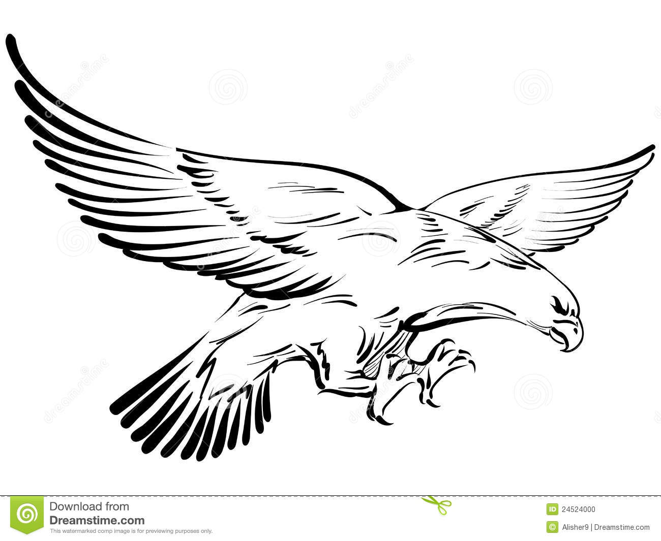 Eagle Doodle Stock Vector Illustration Of Bird Predator