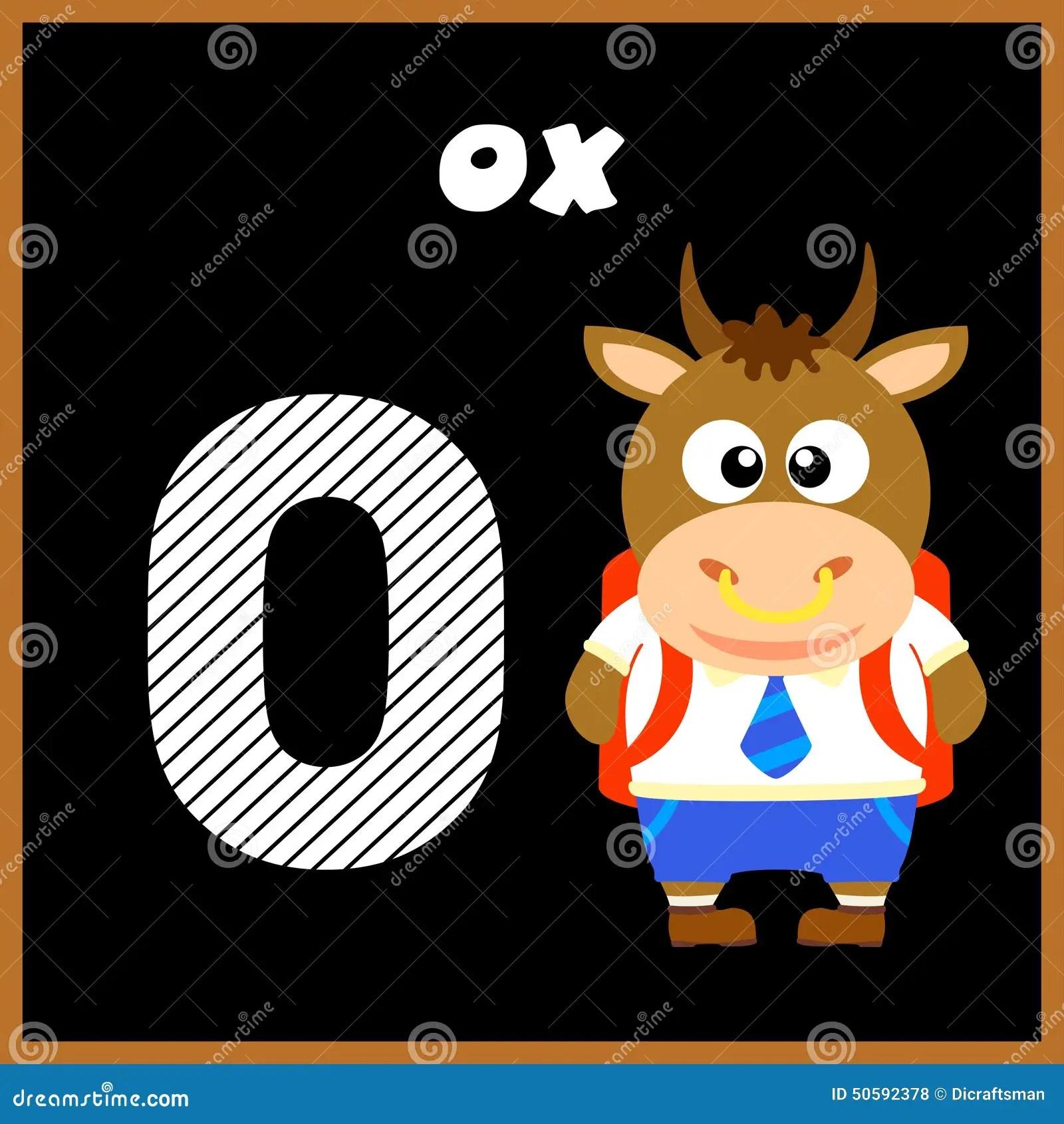 The English Alphabet Letter O Stock Vector