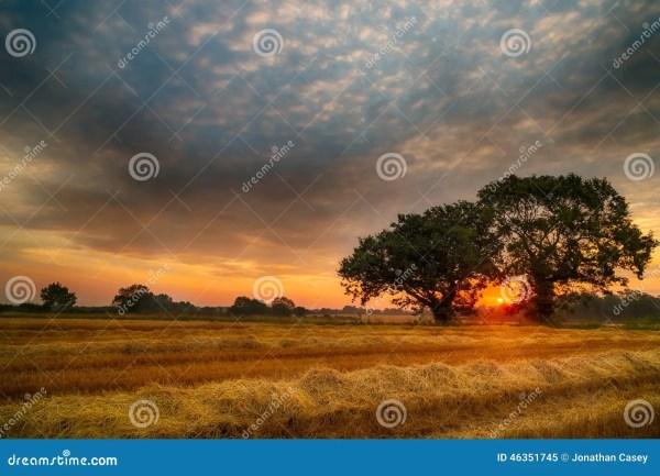 English Summer Sunrise stock image. Image of norfolk ...
