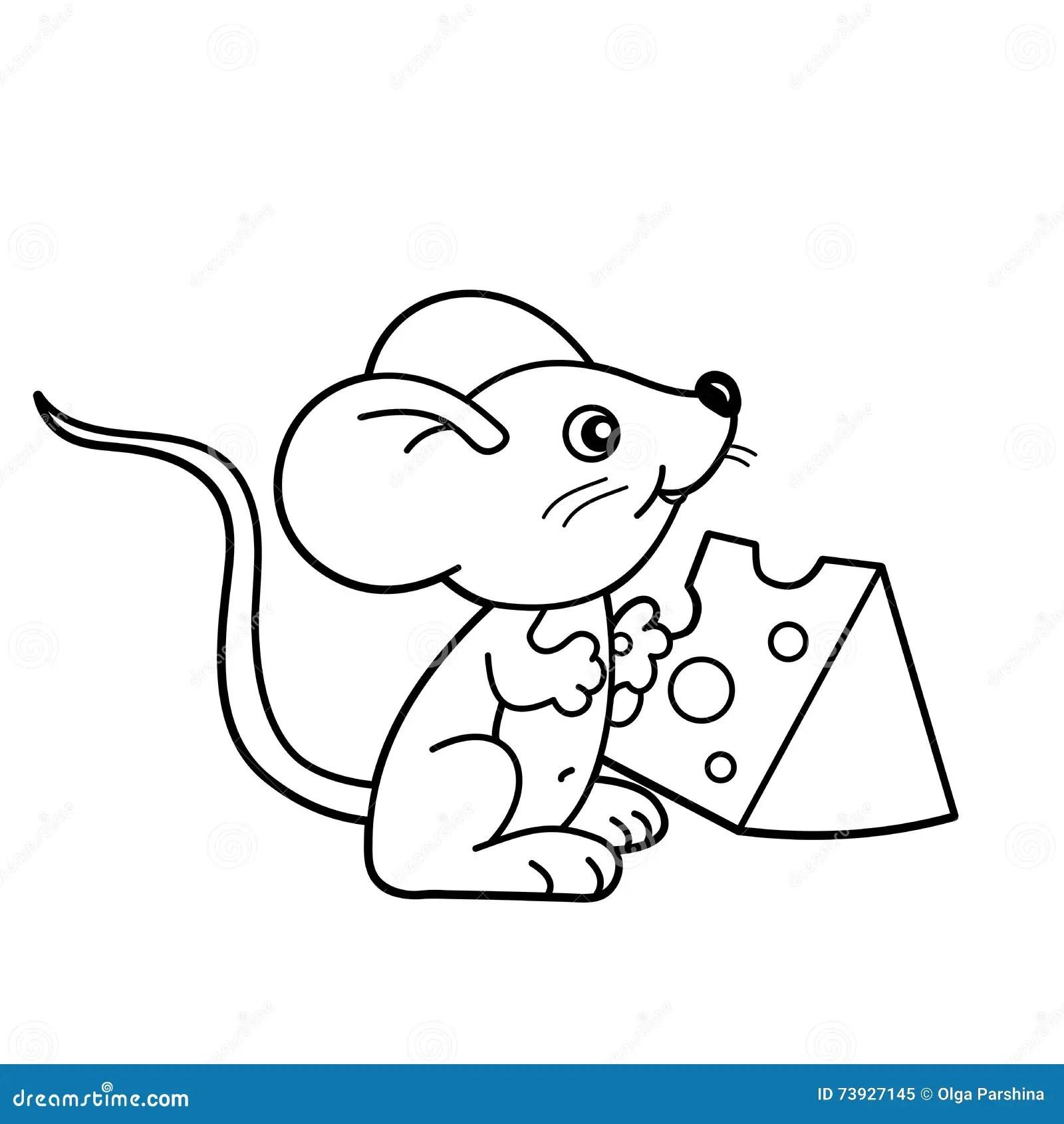 Esquema De La Pagina Que Colorea Del Pequeno Raton De La