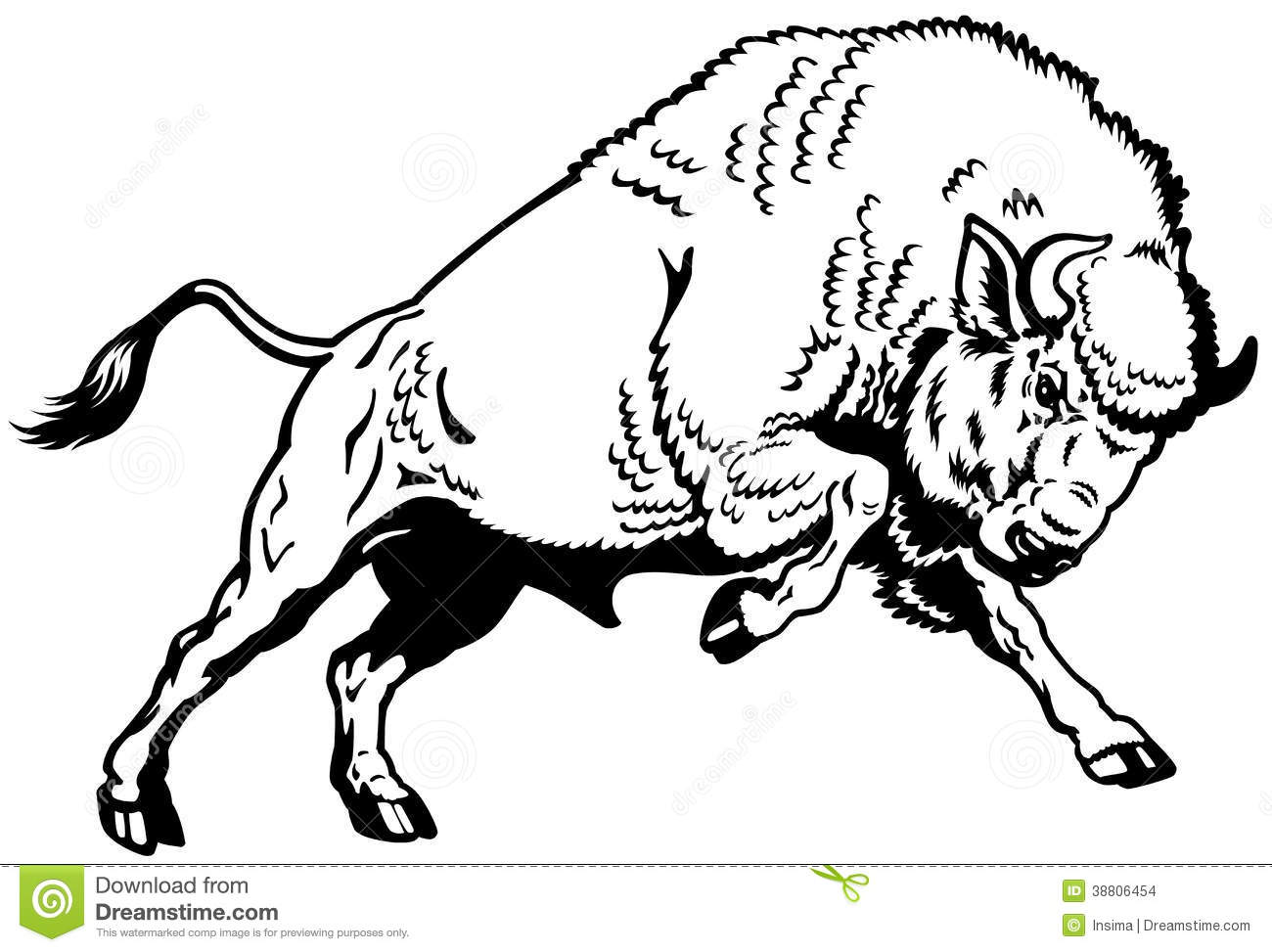European Bison Black White Stock Photo