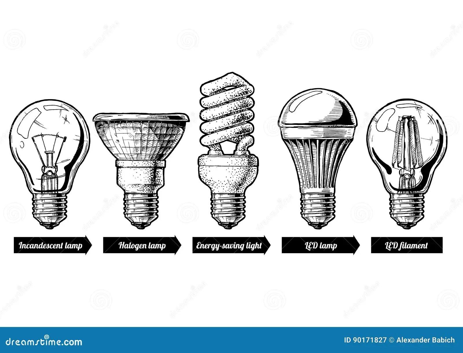 Evolution Set Of Light Bulb Stock Vector