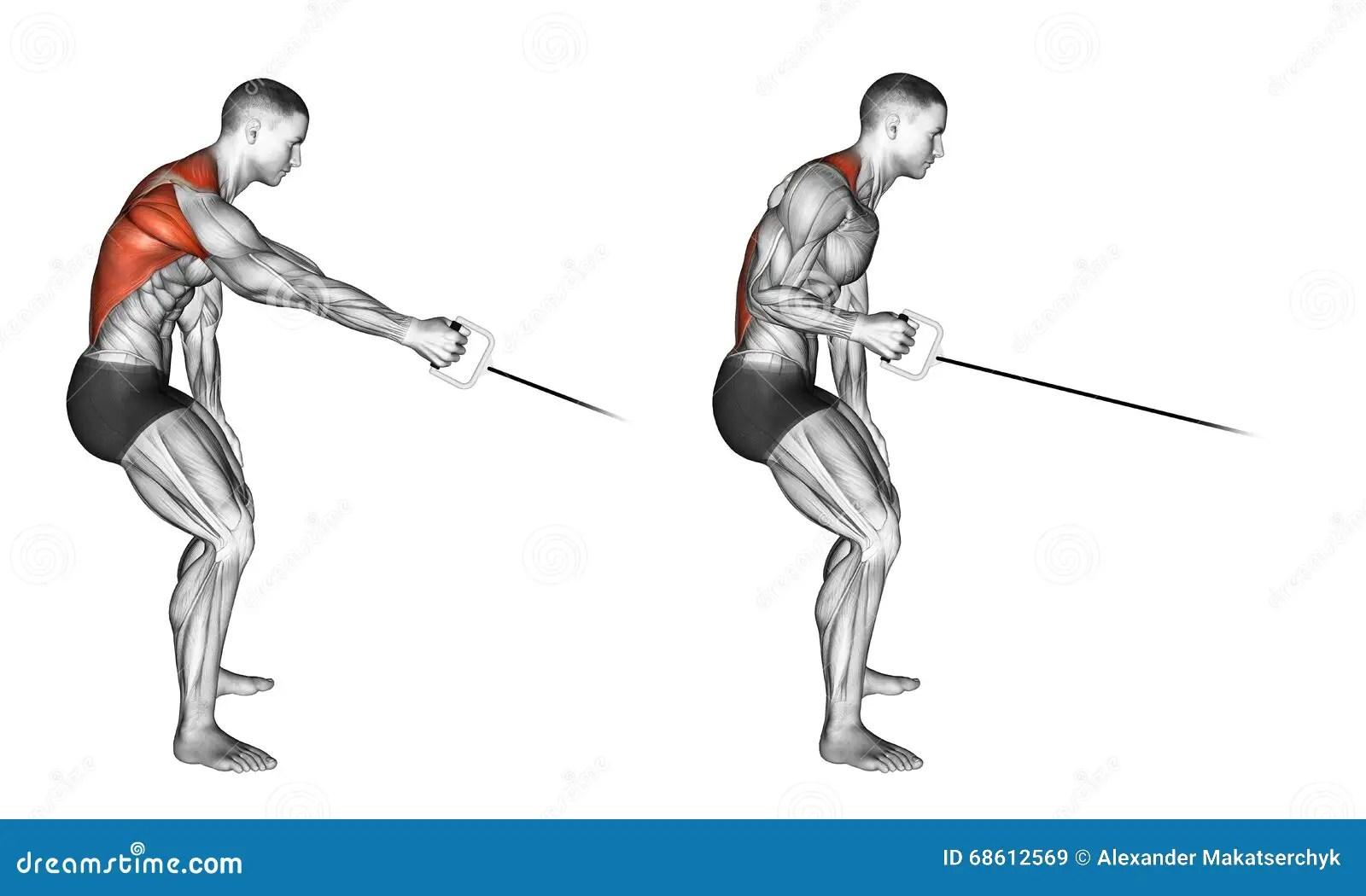Exercising Colocacion De Una Fila Del Cable Del Brazo