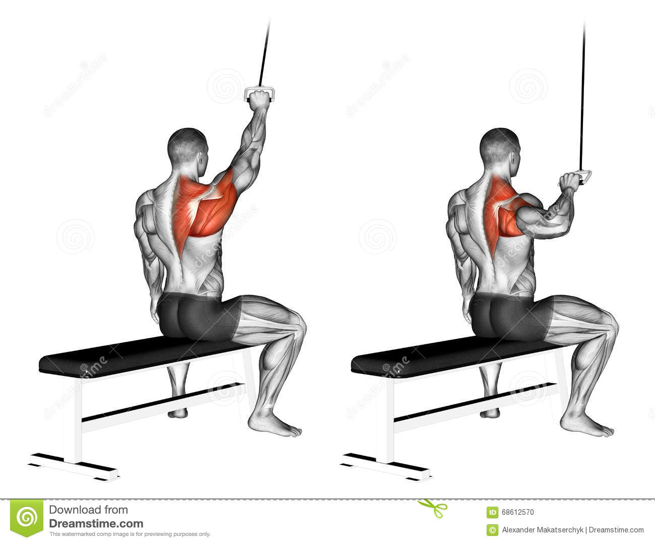 Exercising One Handed Lat Pulldown Stock Illustration