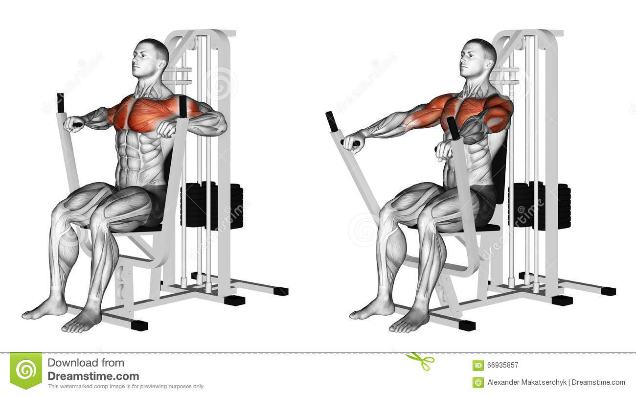 Exercising Seated Chests Press Stock Illustration