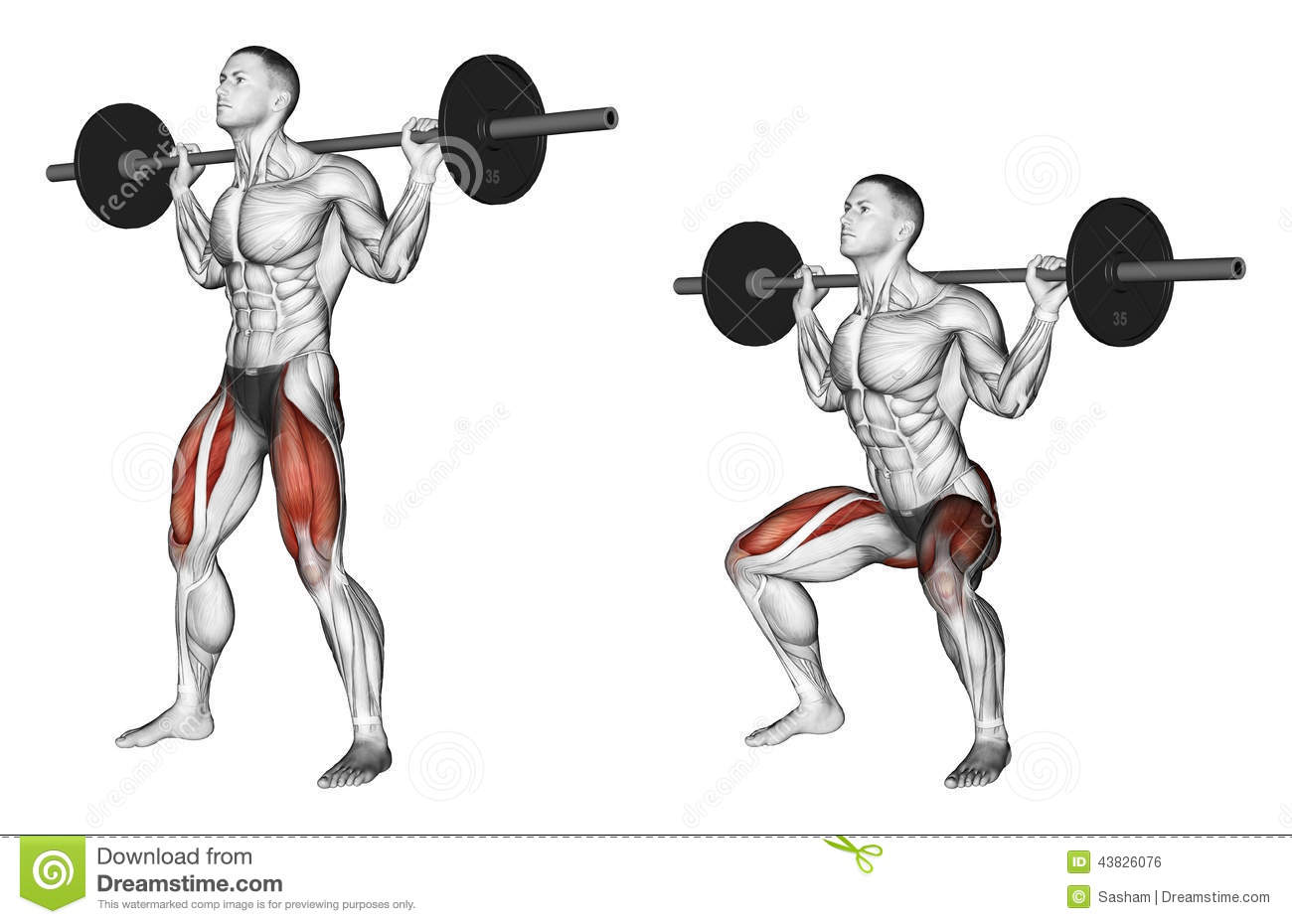 Exercising Squats On The Shoulders Stock Illustration