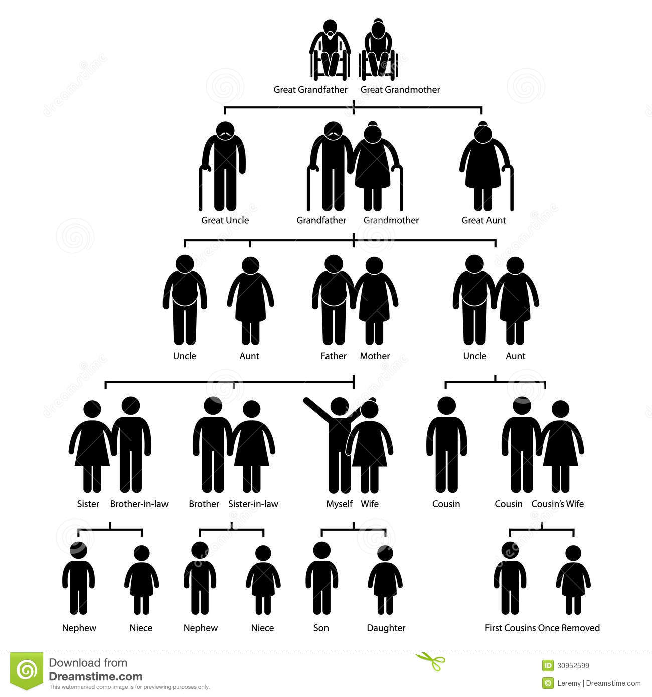 Family Tree Genealogy Diagram Pictogram Stock Vector