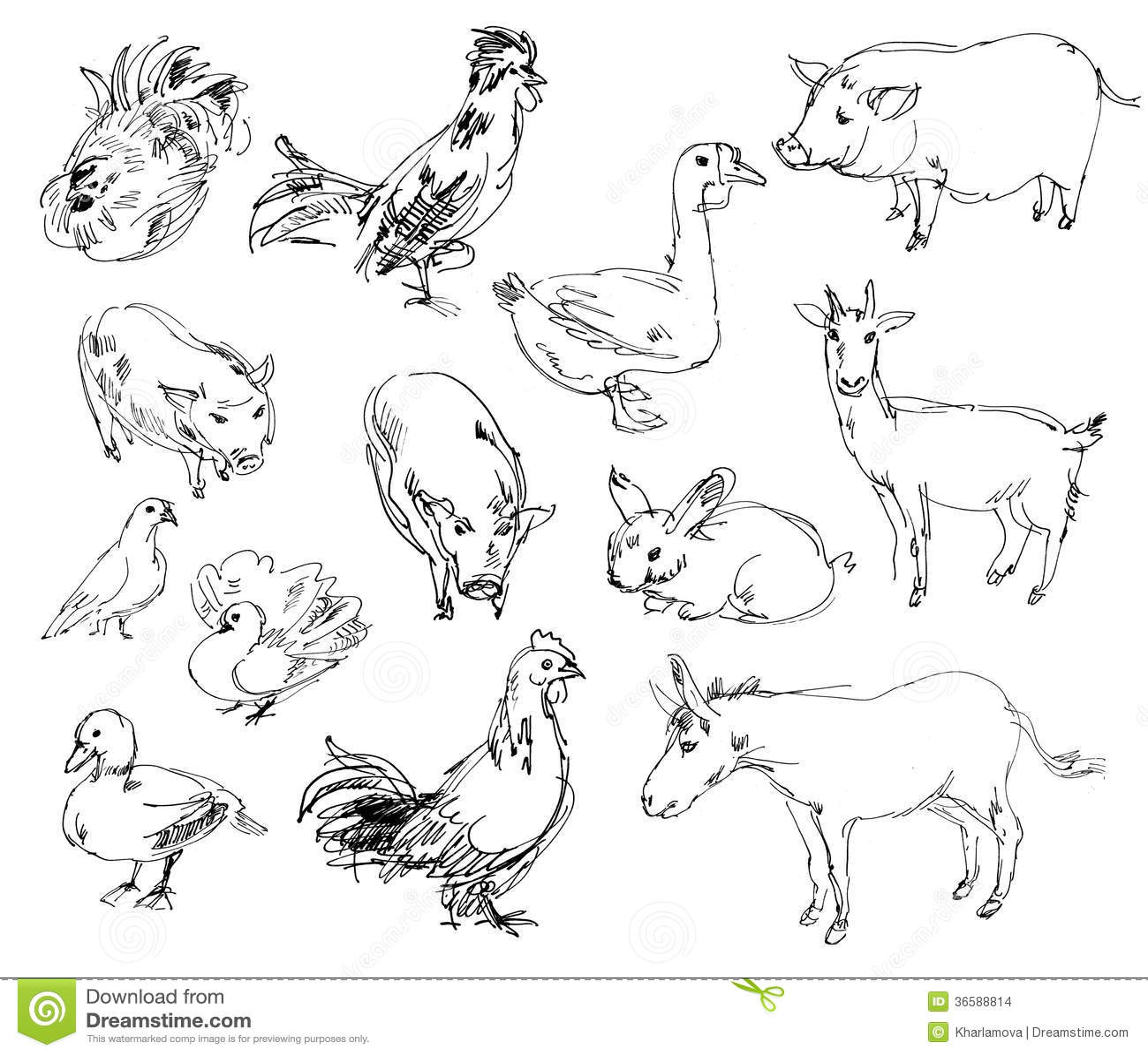 Farm Animals Stock Illustration Illustration Of Pencil