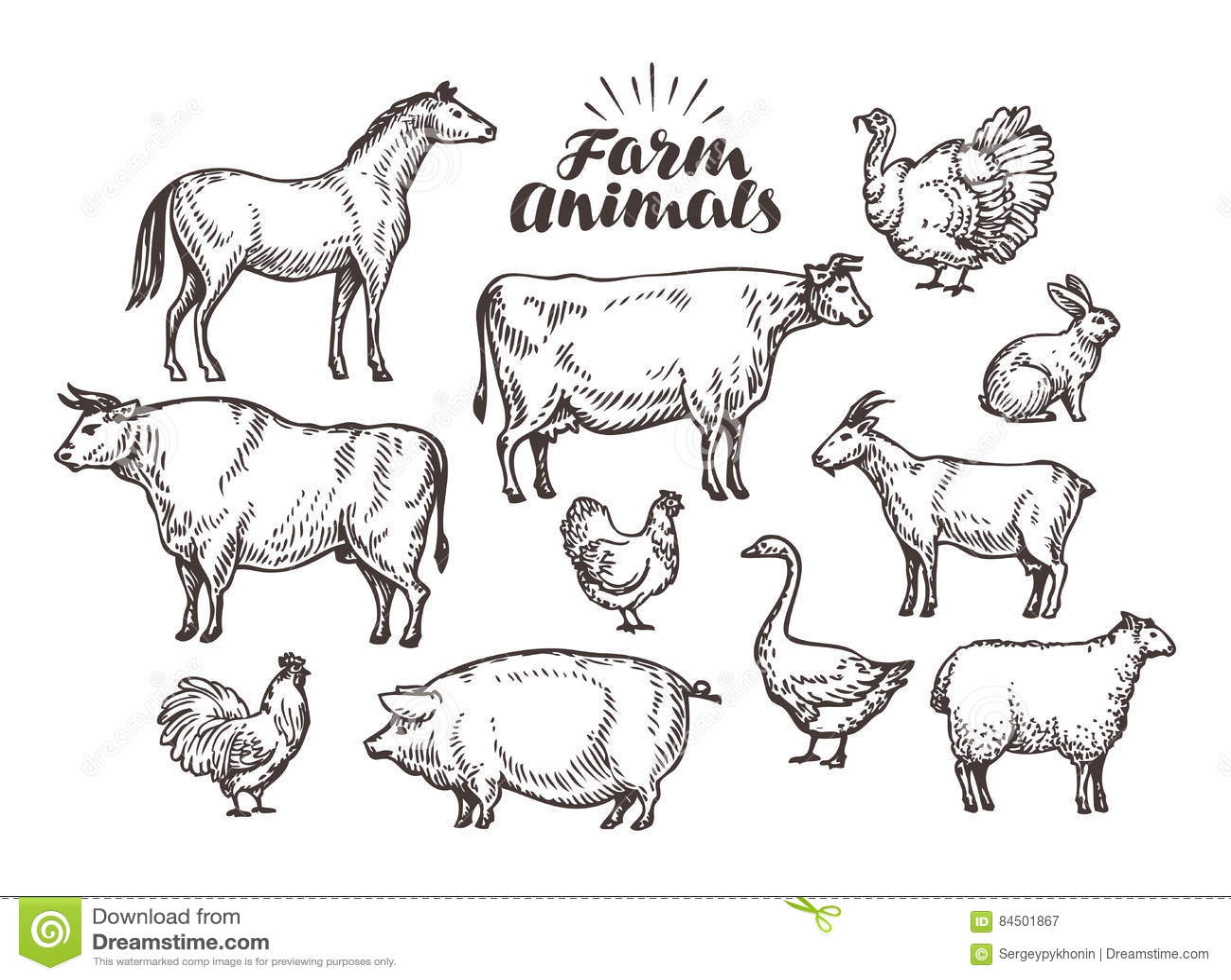 Farm Vector Sketch Collection Animals Such As Horse Cow