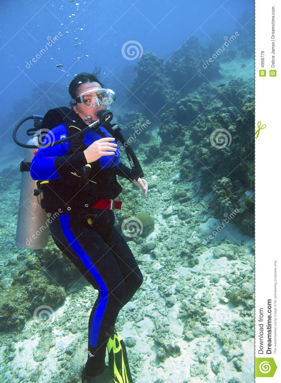 Female Scuba Diver Royalty Free Stock Photos Image 4998778