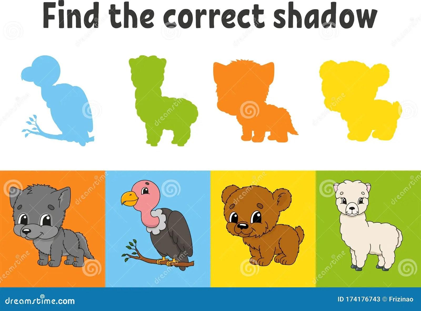 Find The Correct Shadow Animal Wolf Bear Alpaca Bird
