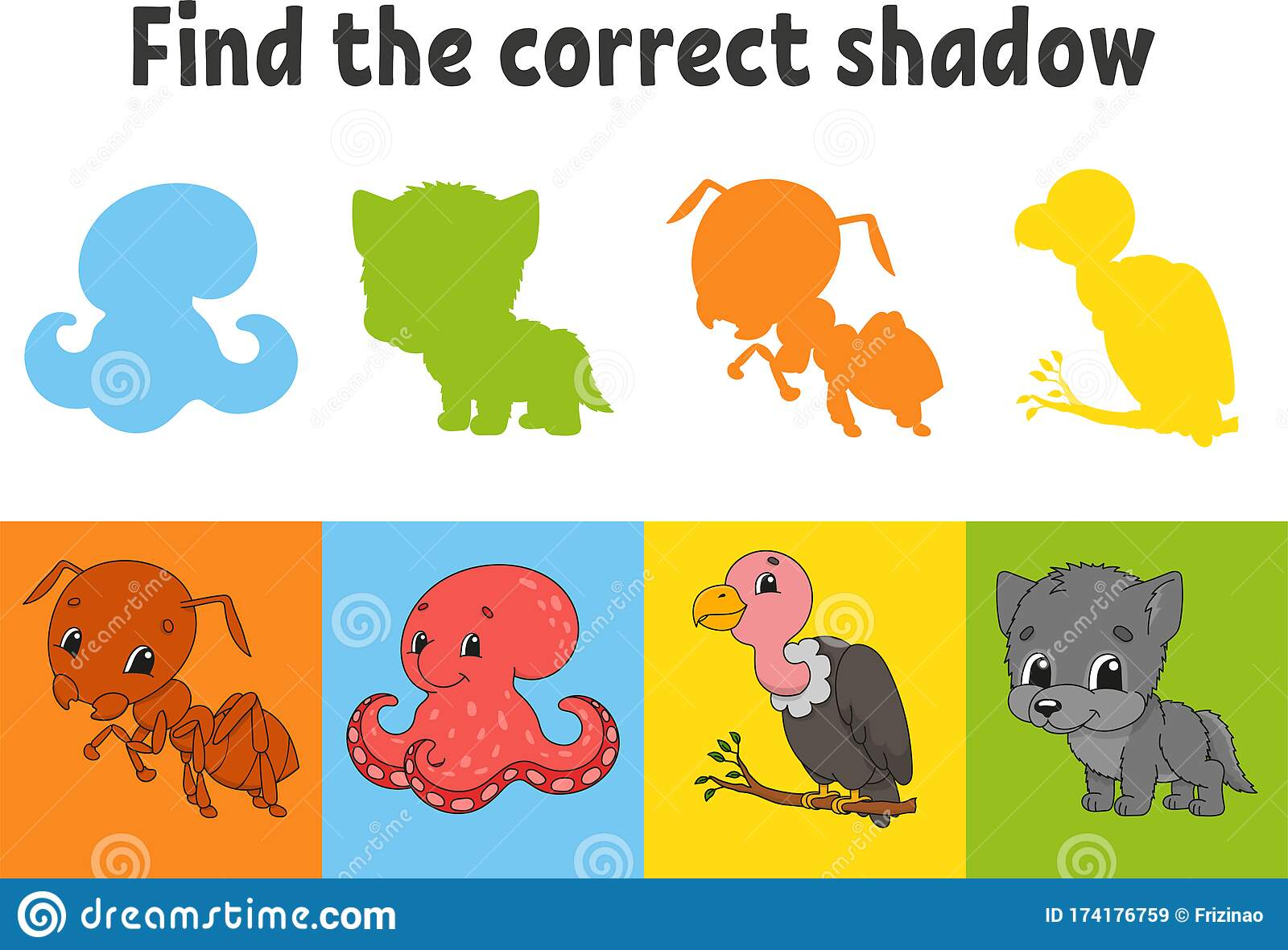 Find The Correct Shadow Ant Octopus Vulture Wolf