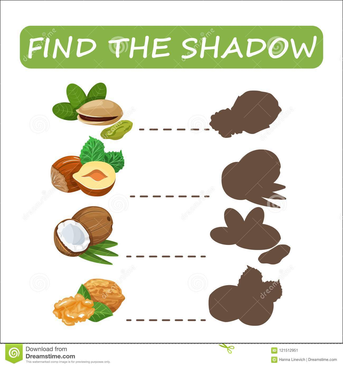 Find True Correct Shadow The Educational Kid Game Cartoon Vector