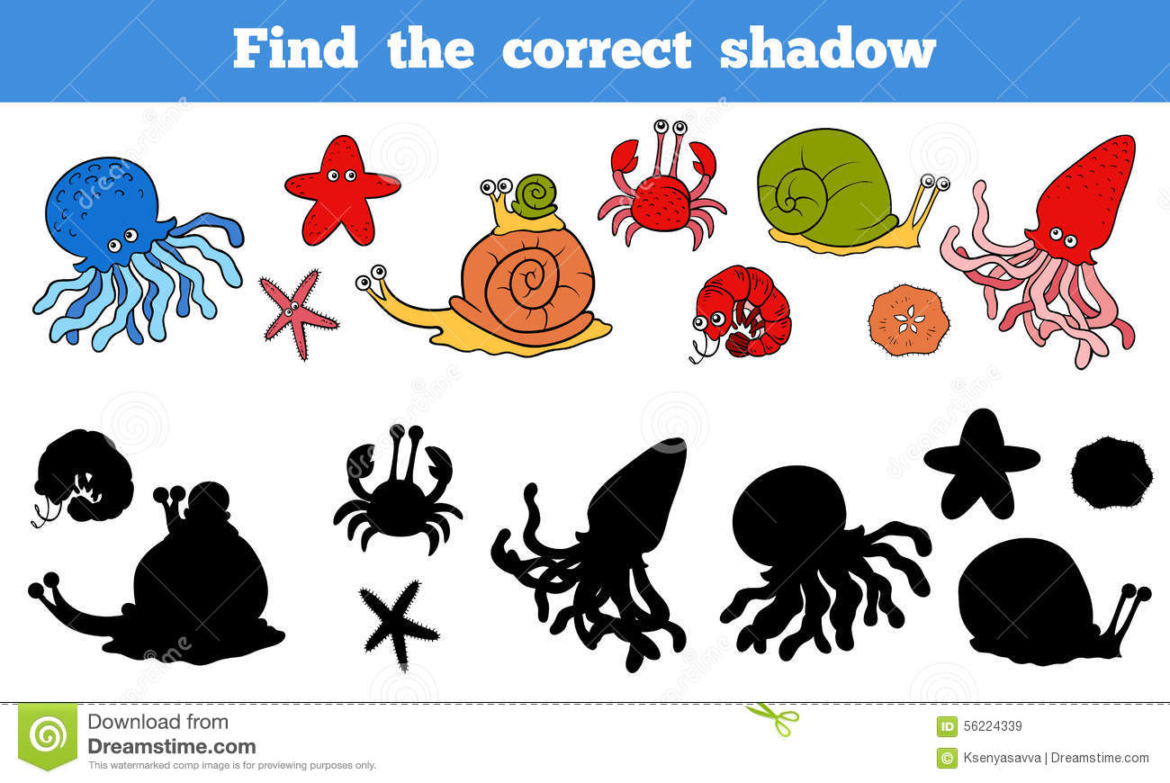 Riddle Book Puzzle