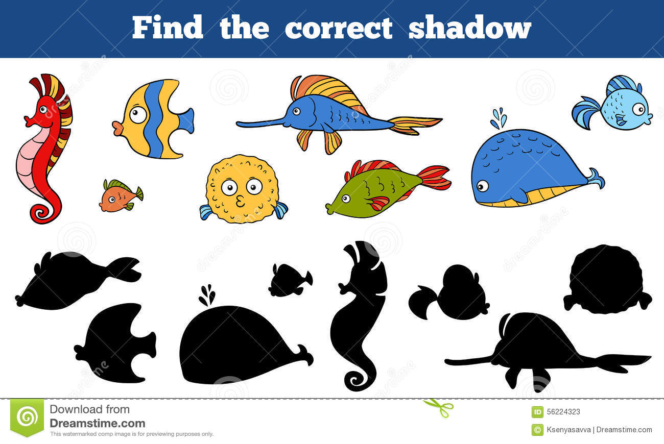 Find The Correct Shadow Sea Life Fish Sea Horse Whale
