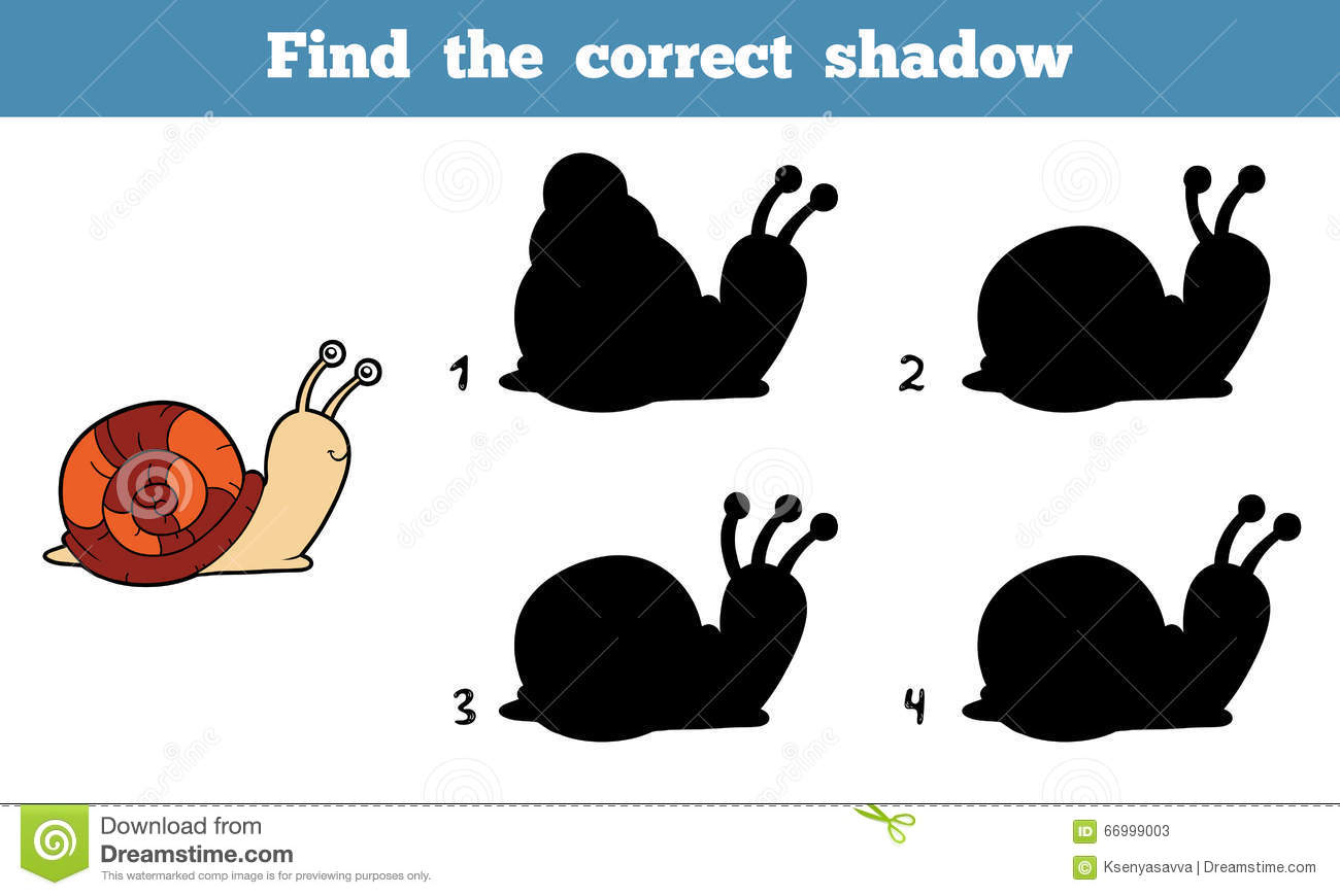 Find The Correct Shadow Snail Stock Vector