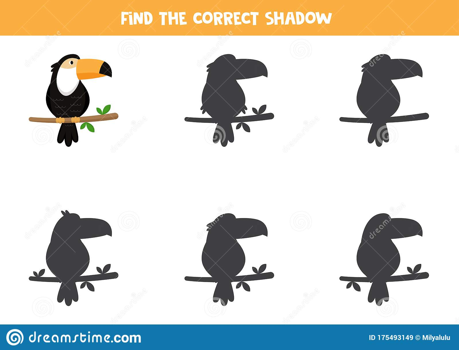 Find The Right Shadow Of Toucan Printable Worksheet For