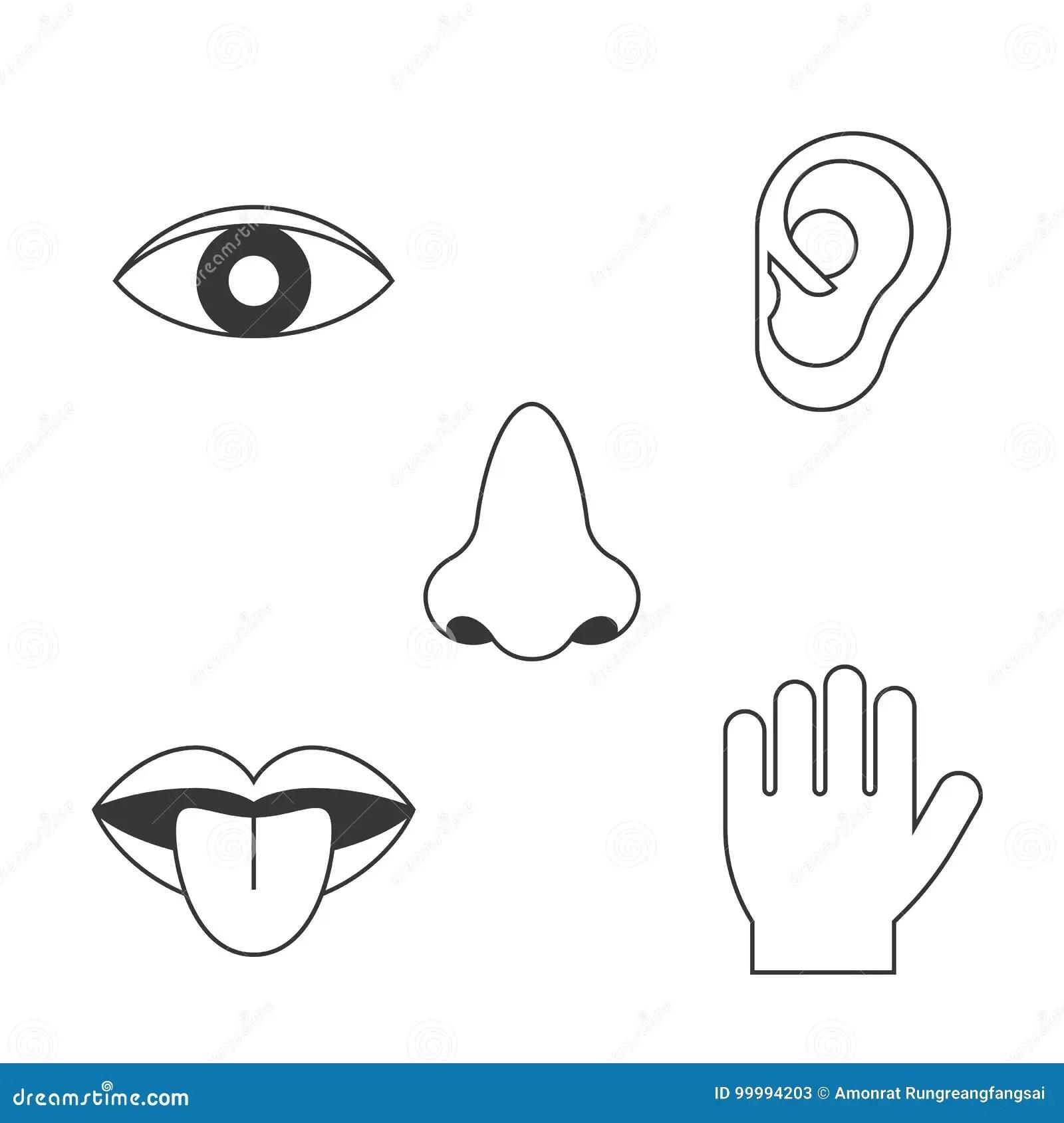 Five Senses Icon Stock Vector Illustration Of Hear