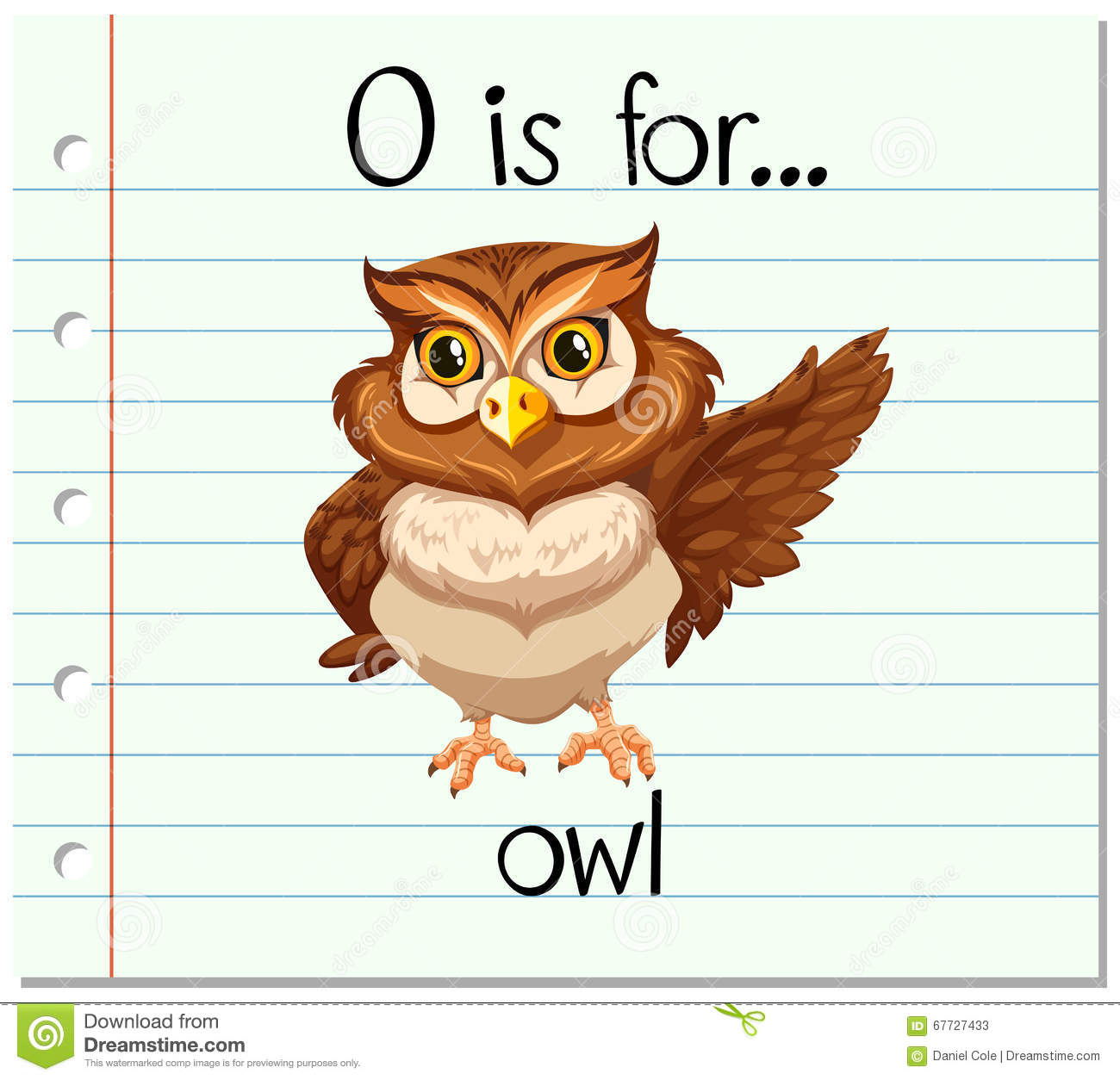 Flashcard Letter O Is For Owl Stock Vector