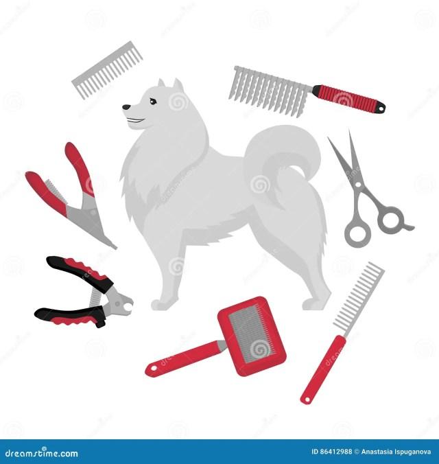 Flat Grooming Salon Equipment  Set Dog Haircut  Tools  Icons