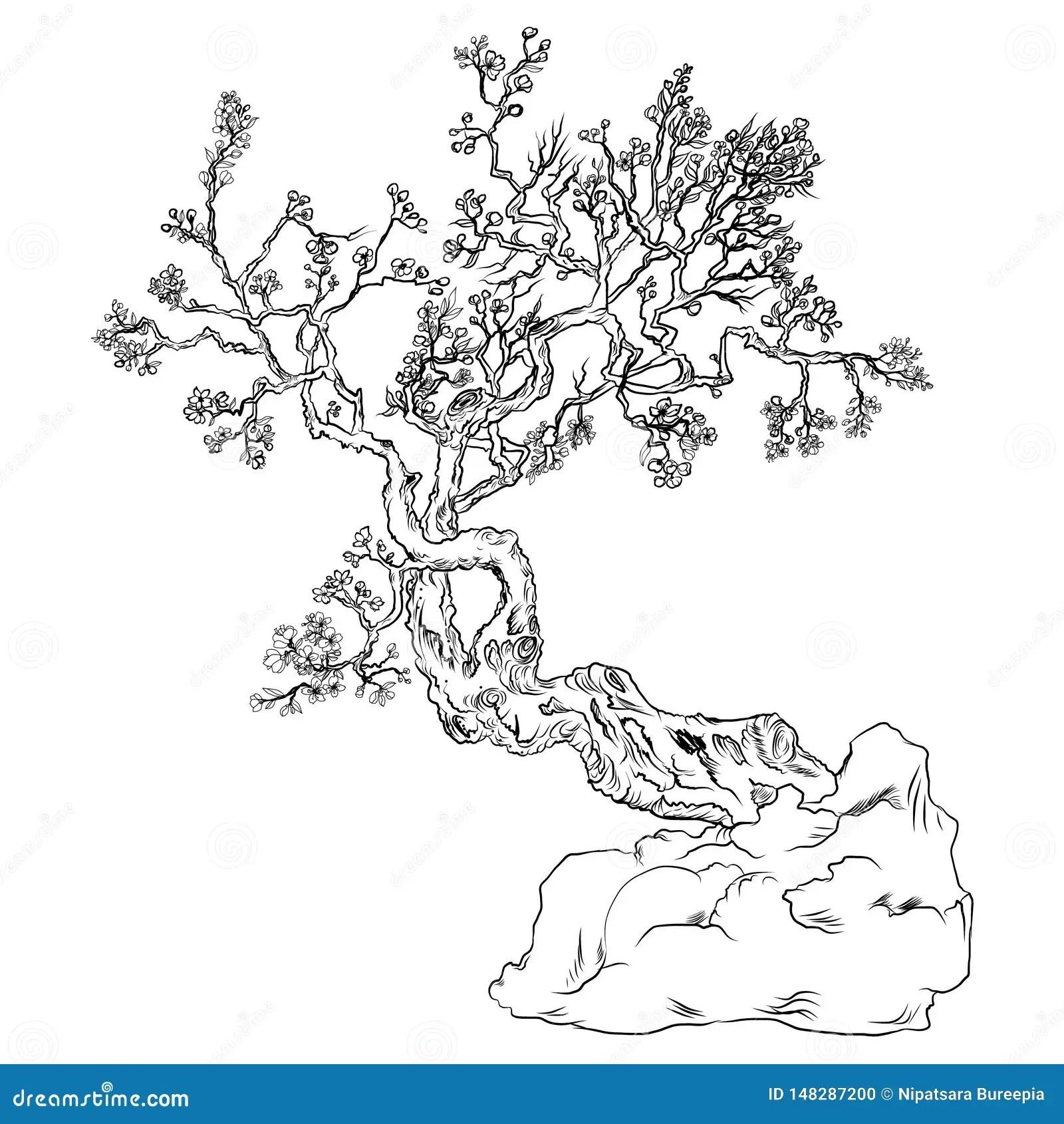 Fleur De Fleurs De Cerisier Du Japon Fleur De Peche D Ensemble Et De Silhouette Illustration De Vecteur Illustration Du Fleurs Cerisier 148287200