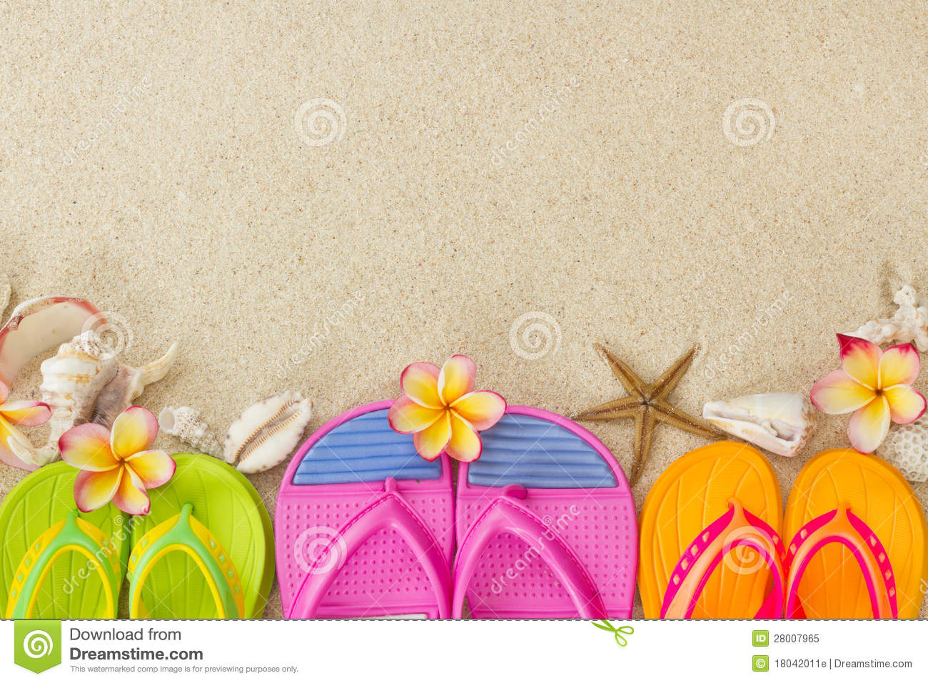 Flip Flops In The Sand With Shells And Frangipani Royalty