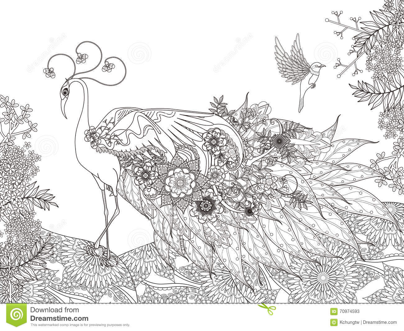 Floral Feather Peacock Coloring Page Stock Illustration